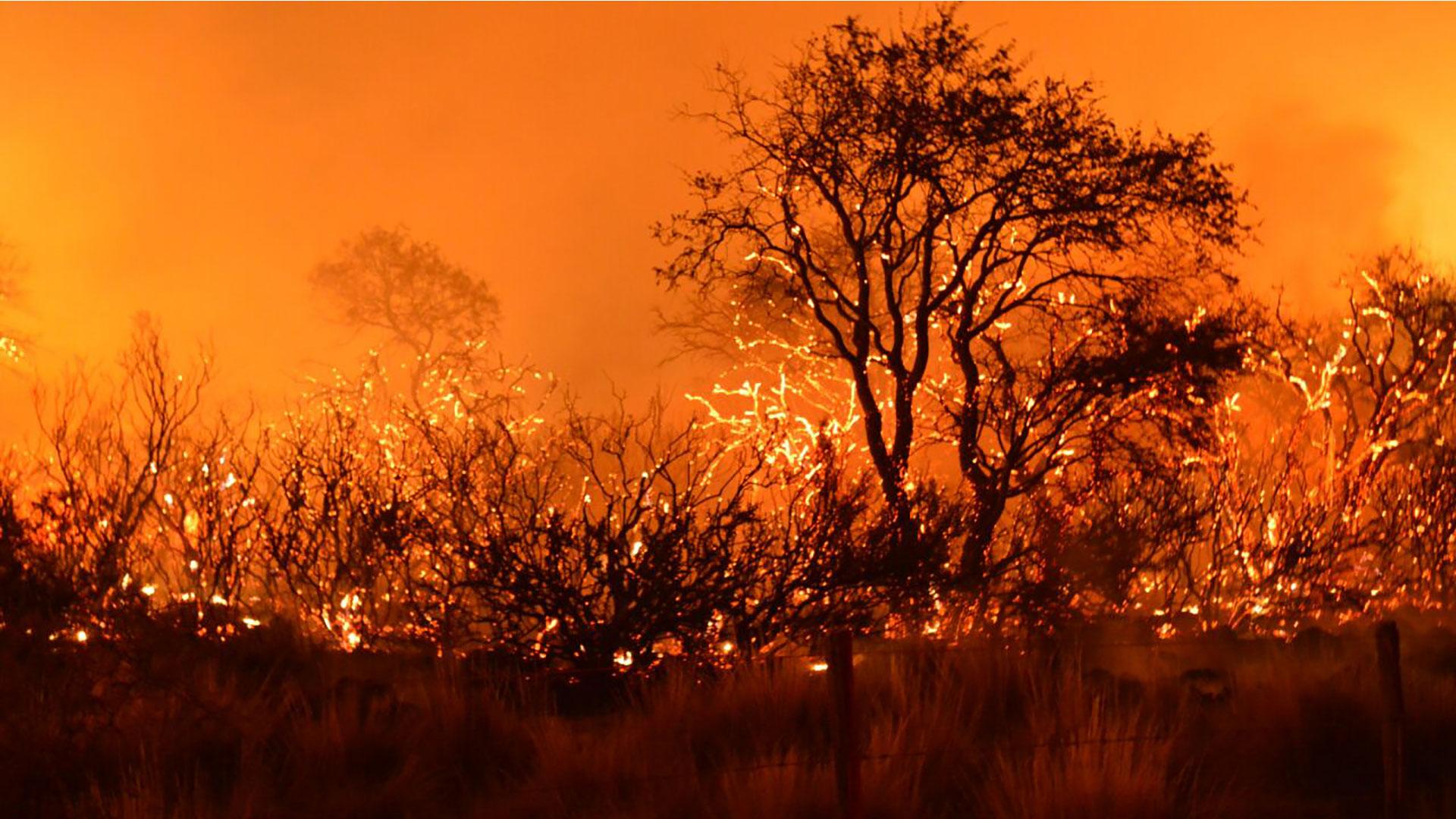 Imágenes sobre los incendios en La Pampa, en febrero de 2018.