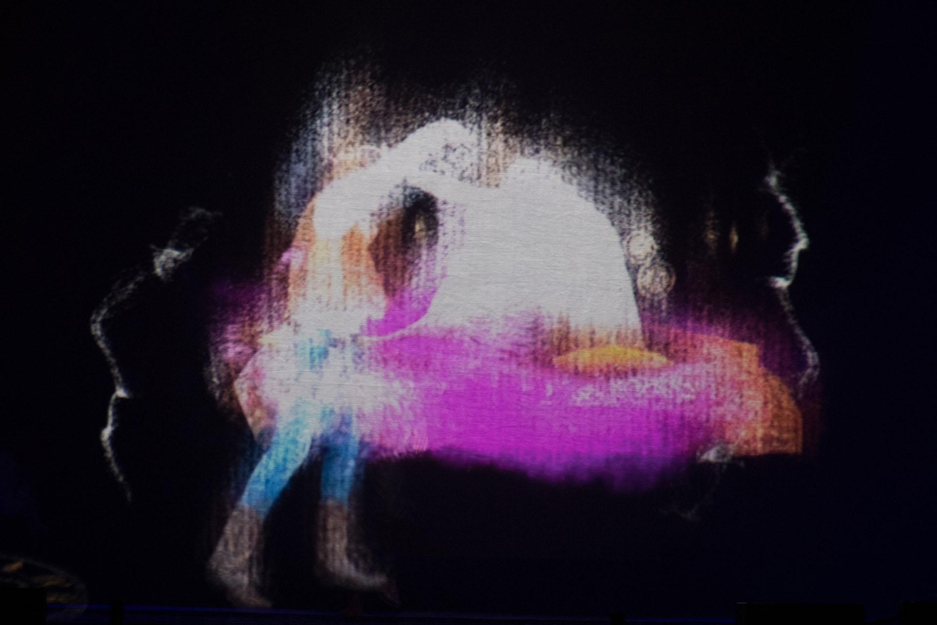 Los hologramas, fuegos artificiales y juegos de luces impactaron a los invitados en la fiesta Far West