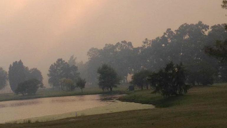 Así amaneció hoy la Reserva Natural Otamendi. El humo obstaculizó la visión de los automovilistas sobre la autopista Panamericana.