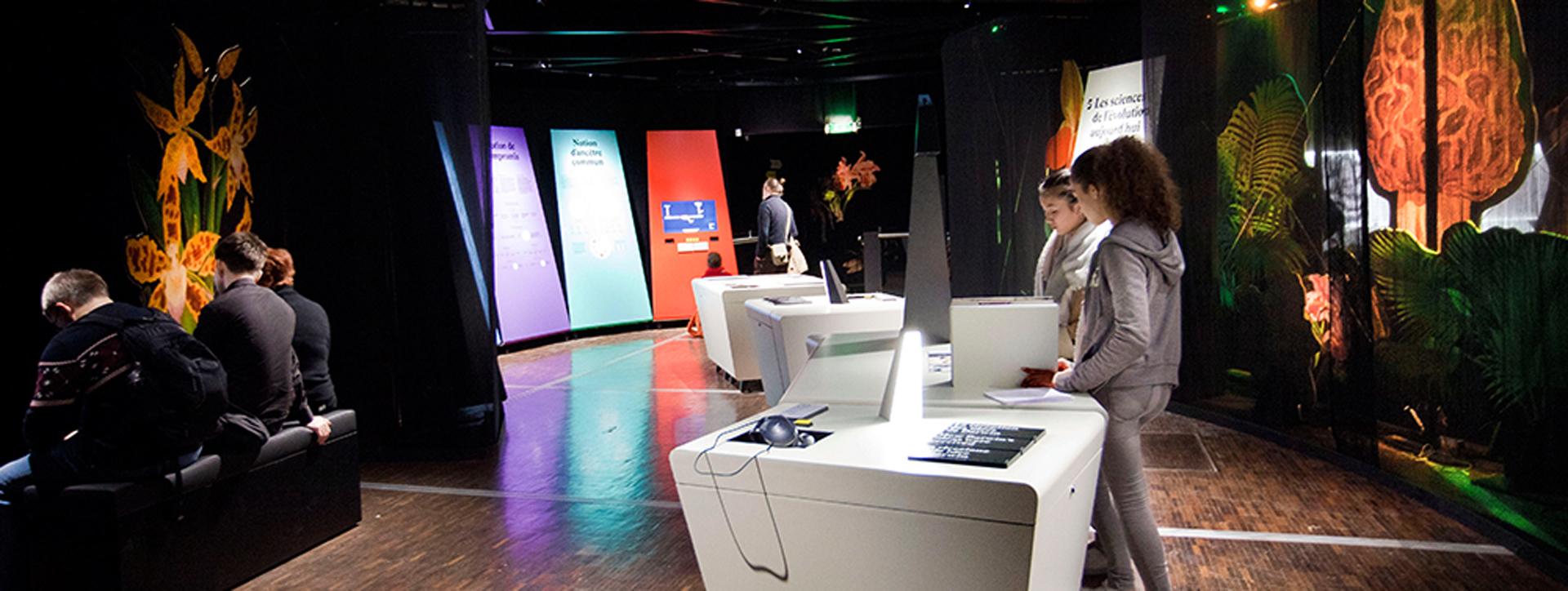 En el programa interactivo se podrá disfrutar de películas, dispositivos multimedia interactivos y juegos
