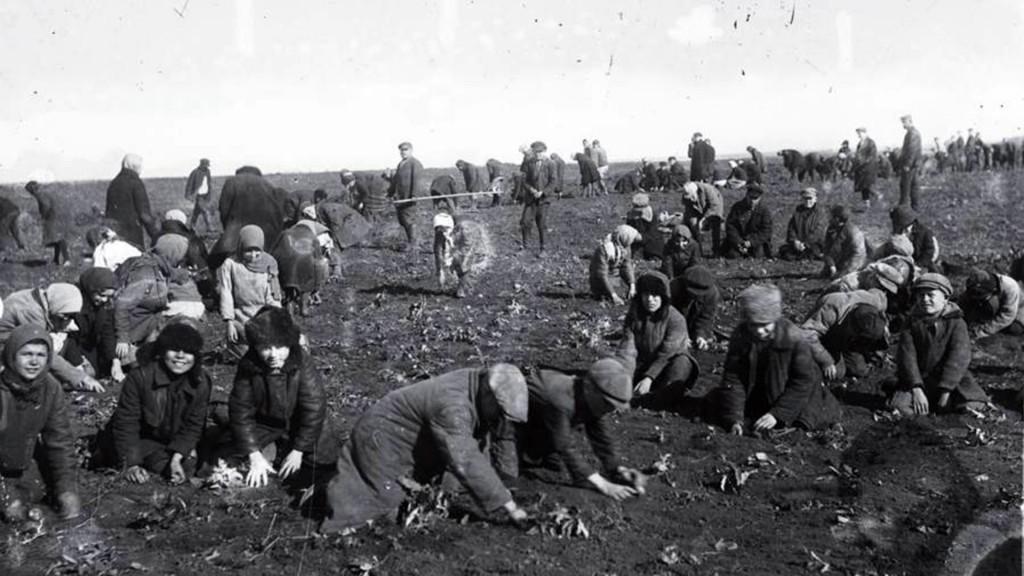 Holodomor-7