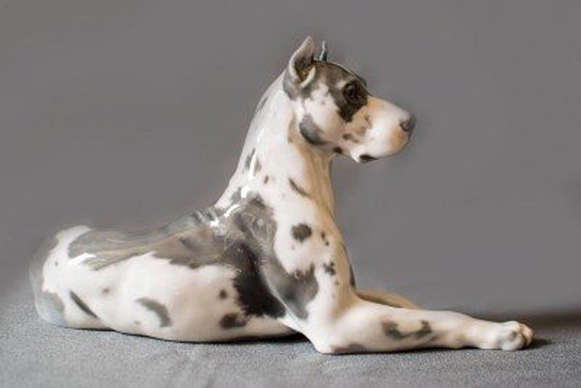 230 esculturas de porcelana de perros, una innovadora idea de Juan Carlos Rodríguez Pividal