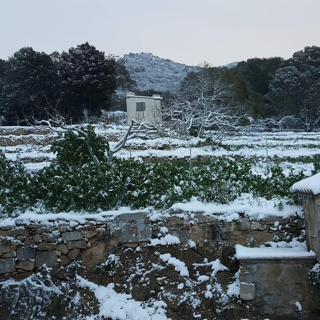 Nieve en Córsega (FIORETTI CAROLE /via REUTERS)