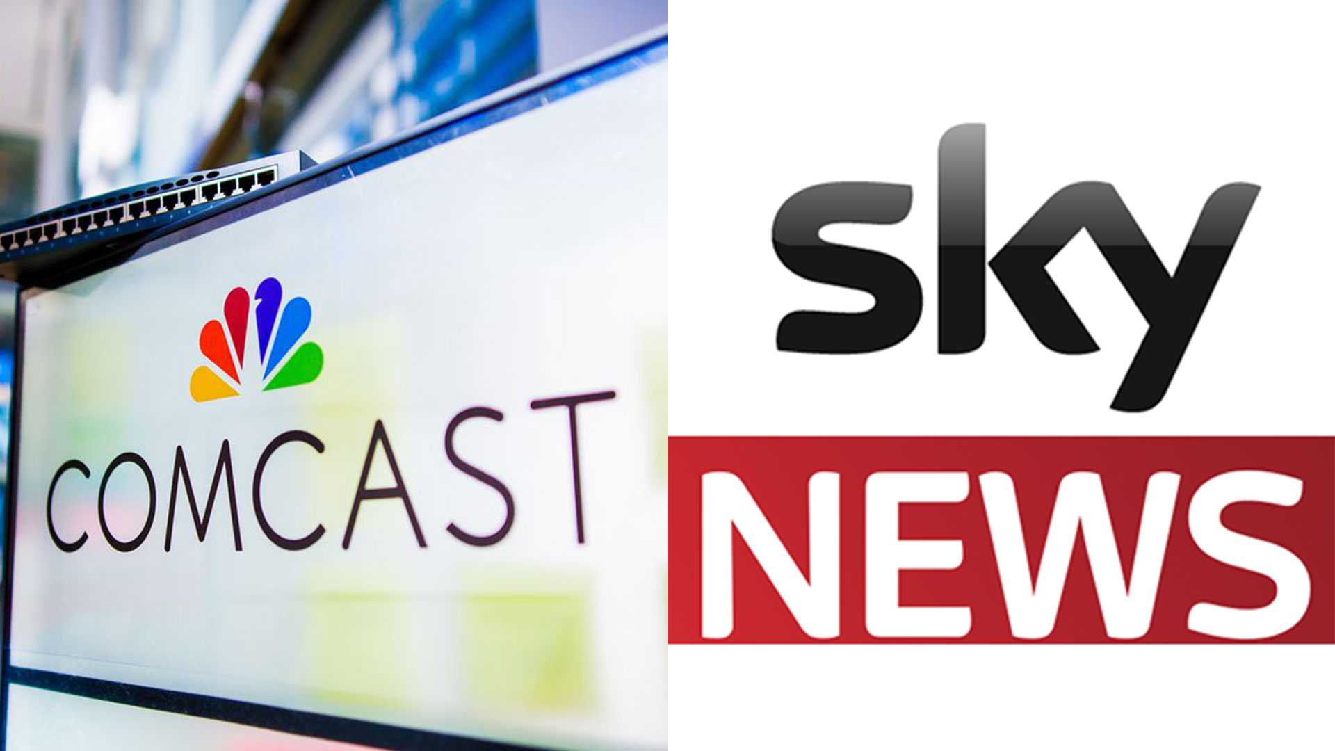 Sky es la compañía de medios más grande y líder de Europa y la mayor compañía de televisión por suscripción, con 21 millones de suscriptores y 30,000 empleados a partir de 2015.