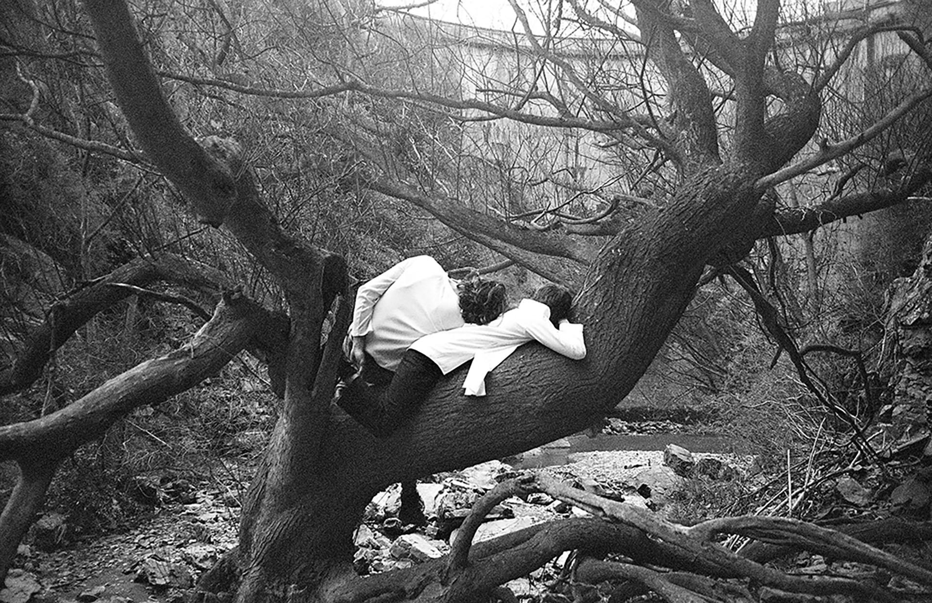 Nombre de la imagen: cuando quiero recordar – Fotógrafo: Bianca Rocca, Auckland University, New Zealand