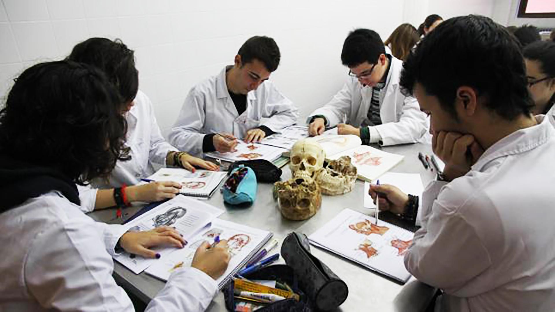 Para que no abandonen: los estudiantes de Medicina podrán cambiar de  universidad con más facilidad - Infobae