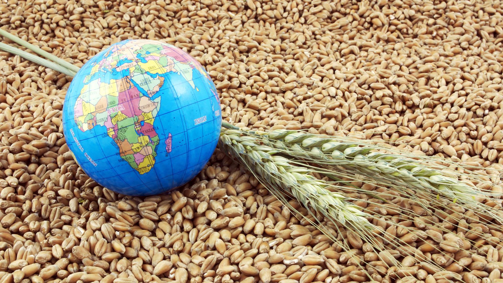 El B20 se enfocará en el acceso a los alimentos y la desnutrición para una población en crecimiento (Getty)