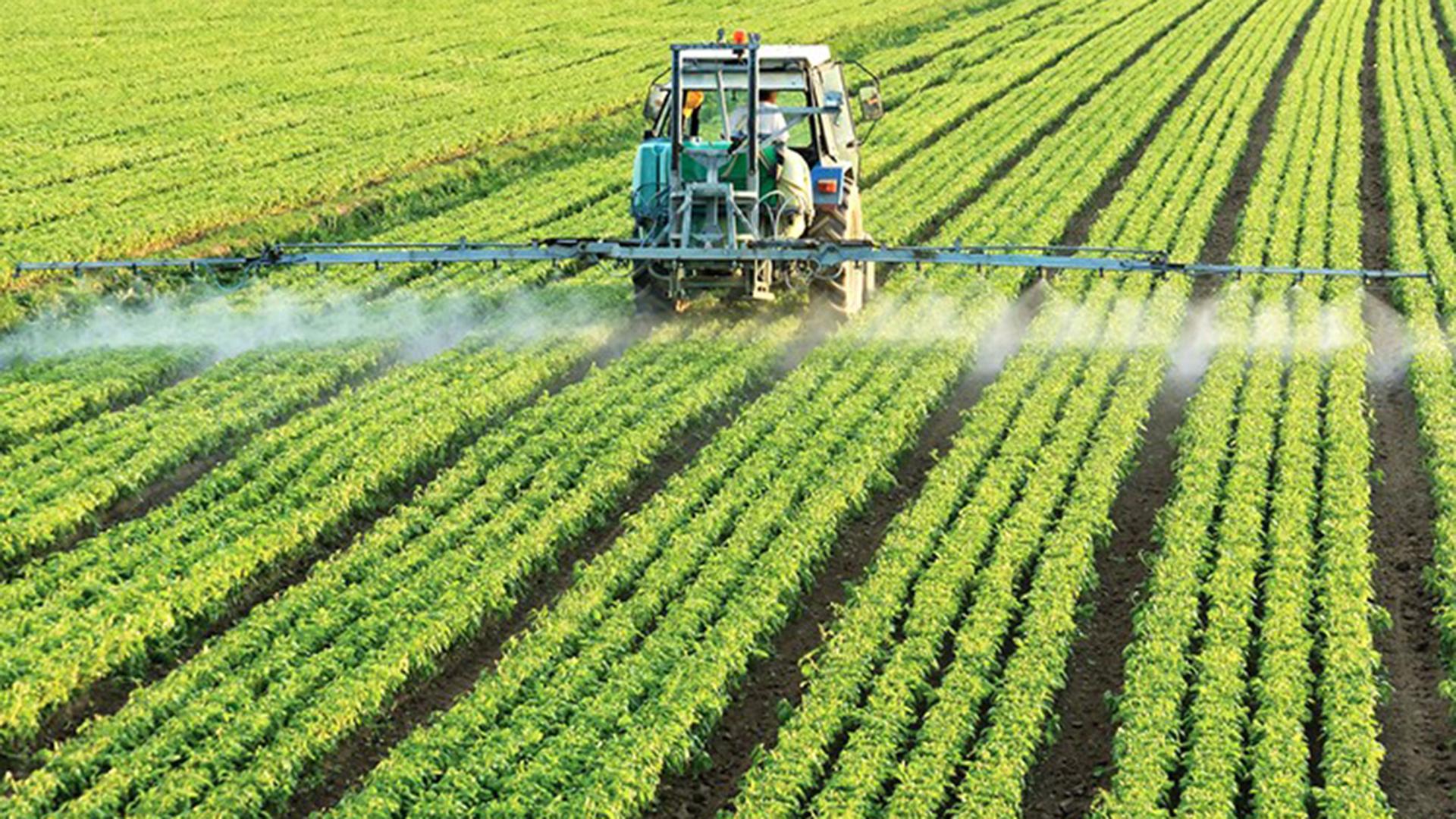 Se complican los números del negocio agropecuario. Por efectos de la sequía, habrá serios problemas de rentabilidad