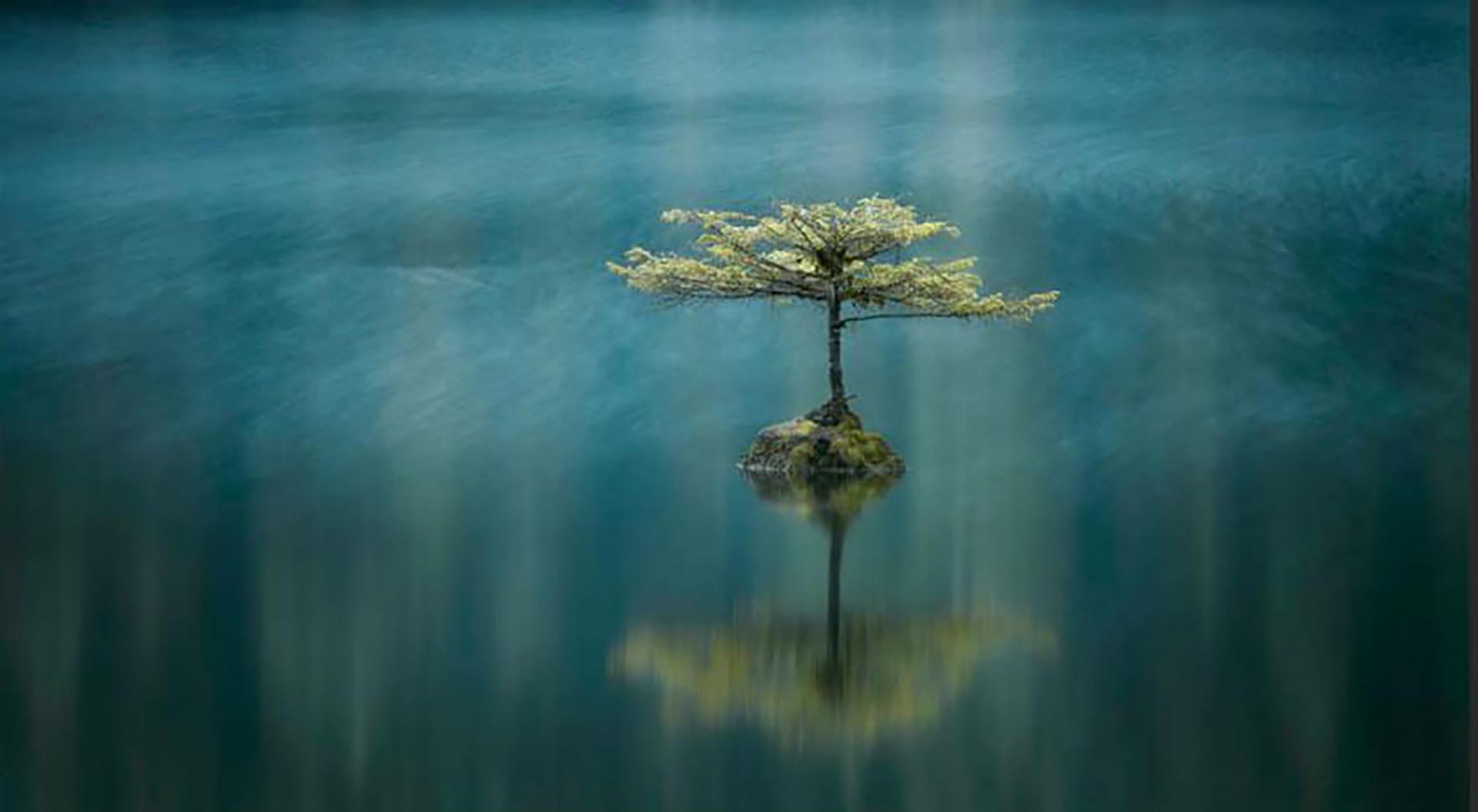 El segundo puesto fue para Adam Gibbs, con la imagen del Fairy Lake, en Canadá