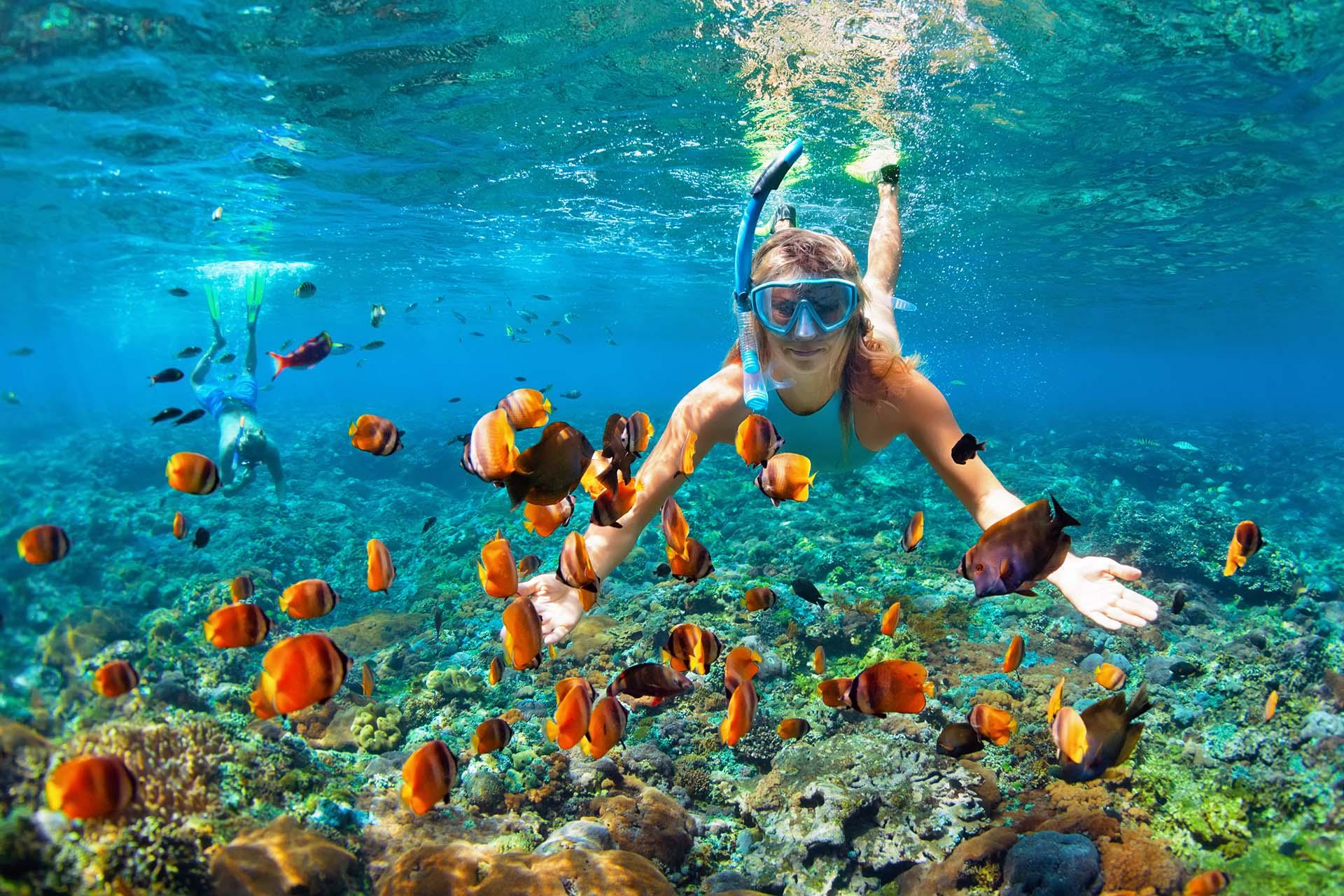 Arraial do Cabo, el Caribe brasilero ideal para practicar snorkel y buceo -  Infobae