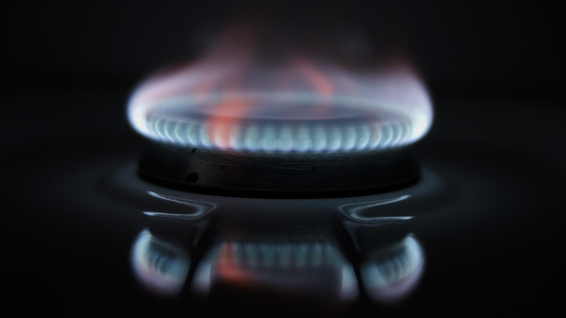 ¿Me interesa contratar tarifas planas de gas y electricidad para pagar lo mismo los doce meses del año?