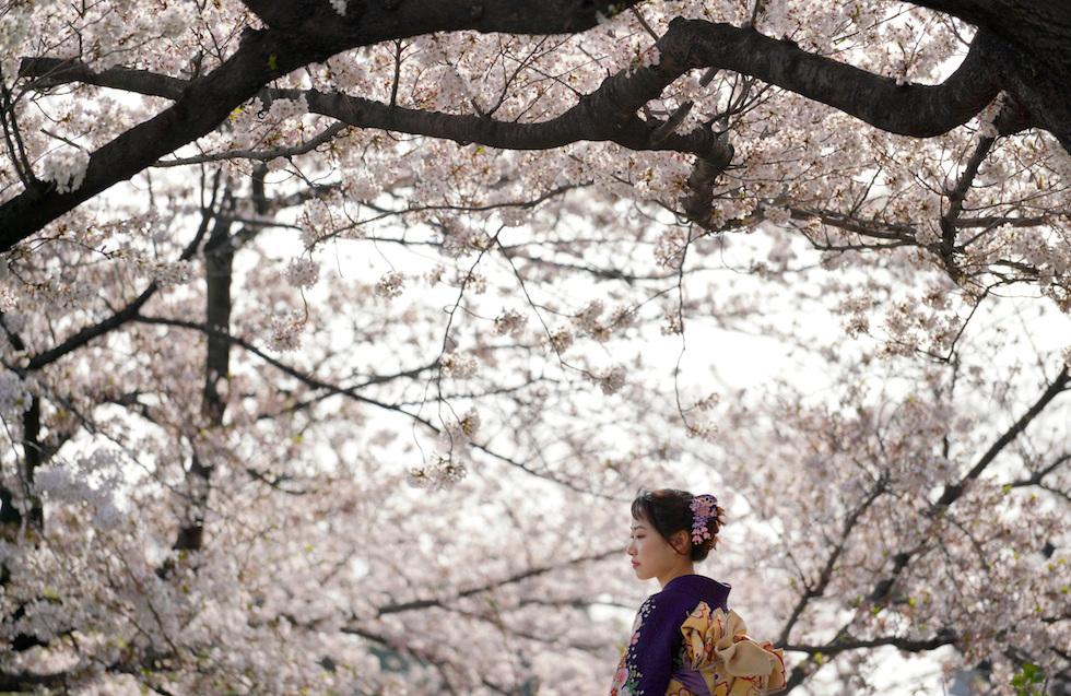 Una joven en un parque de Tokio (AP /Eugene Hoshiko)
