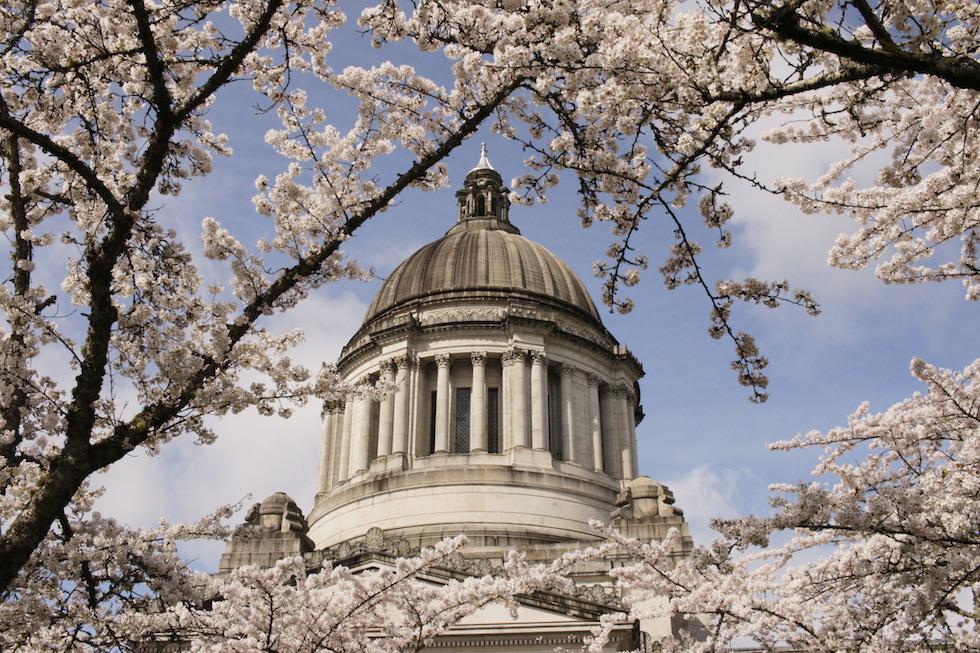 El Capitolio en Washington(AP /Rachel La Corte)