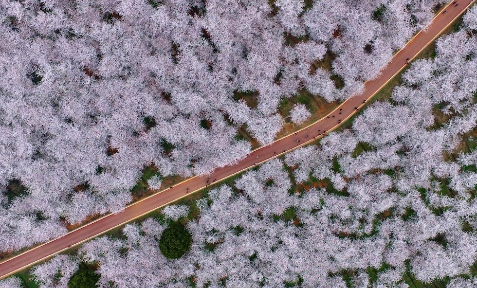 Guiyang, China (Imaginechina, vía AP Images)