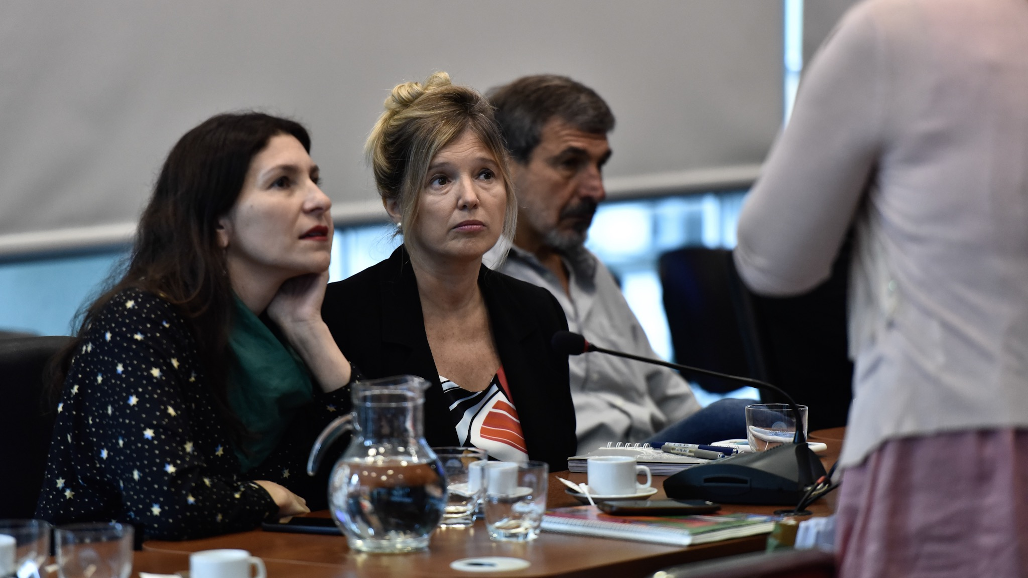 La diputada nacional Cristina Álvarez Rodríguez