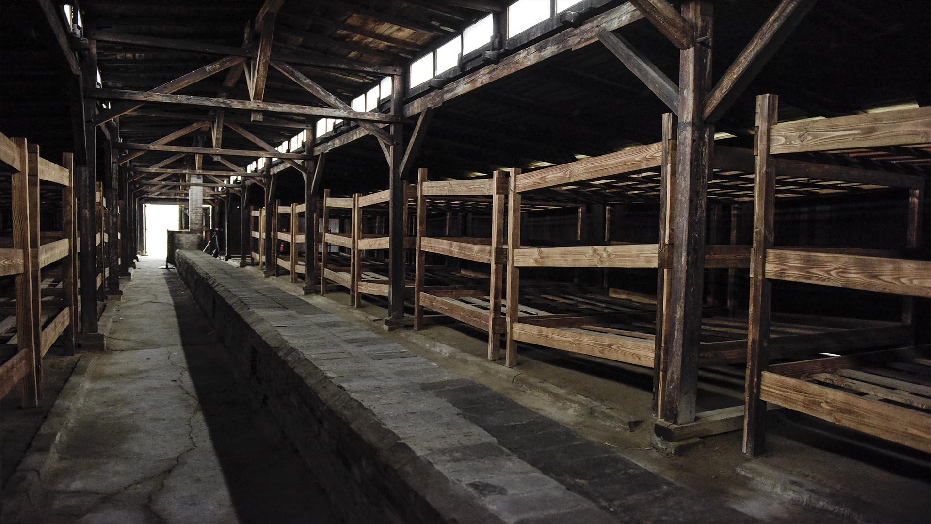 Los camastros donde, hacinados y hambrientos, de los prisioneros judíos (Foto: Victoria Bornaz)