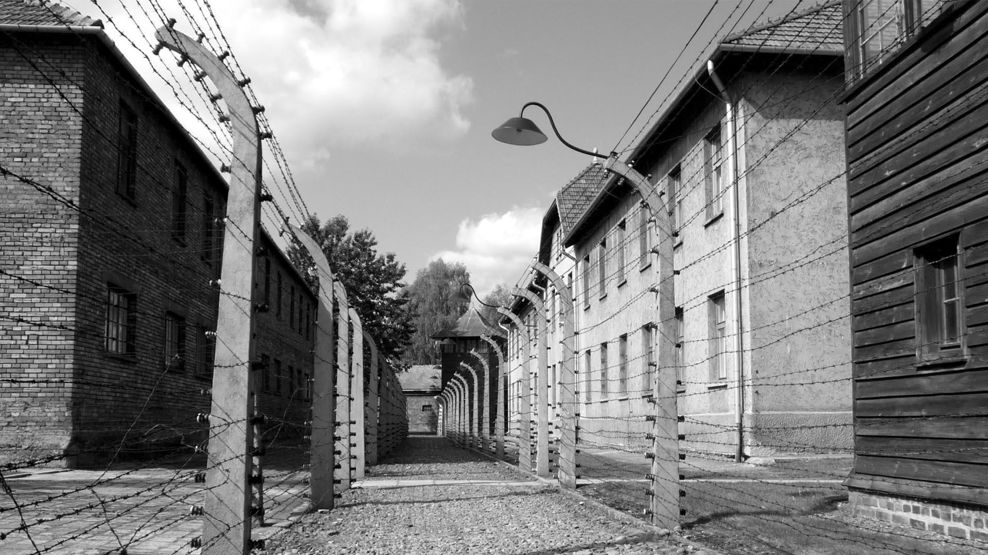 Los alambres de púa. A los que intentaban fugar los nazis los fusilaban a la vista de los demás
