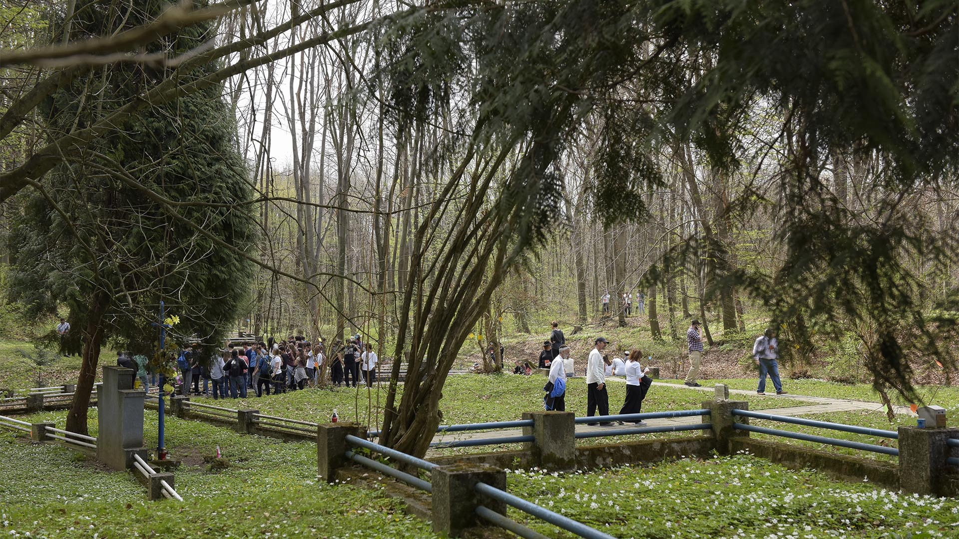 Los jóvenes en el bosque de Buczyna en Zbylitowska Gora