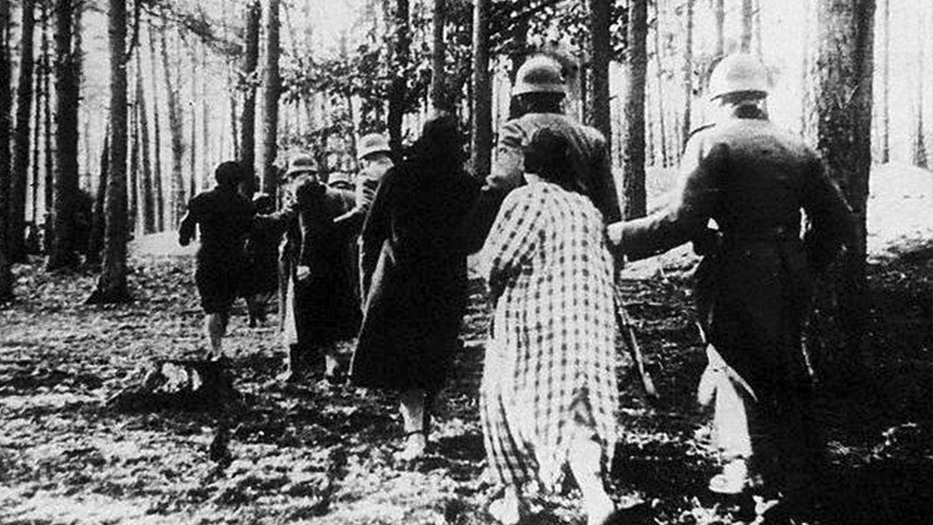 En junio de 1942 masacraron 6000 judíos y 2000 polacos católicos (Foto: Archivo Walter Von Reichenau)