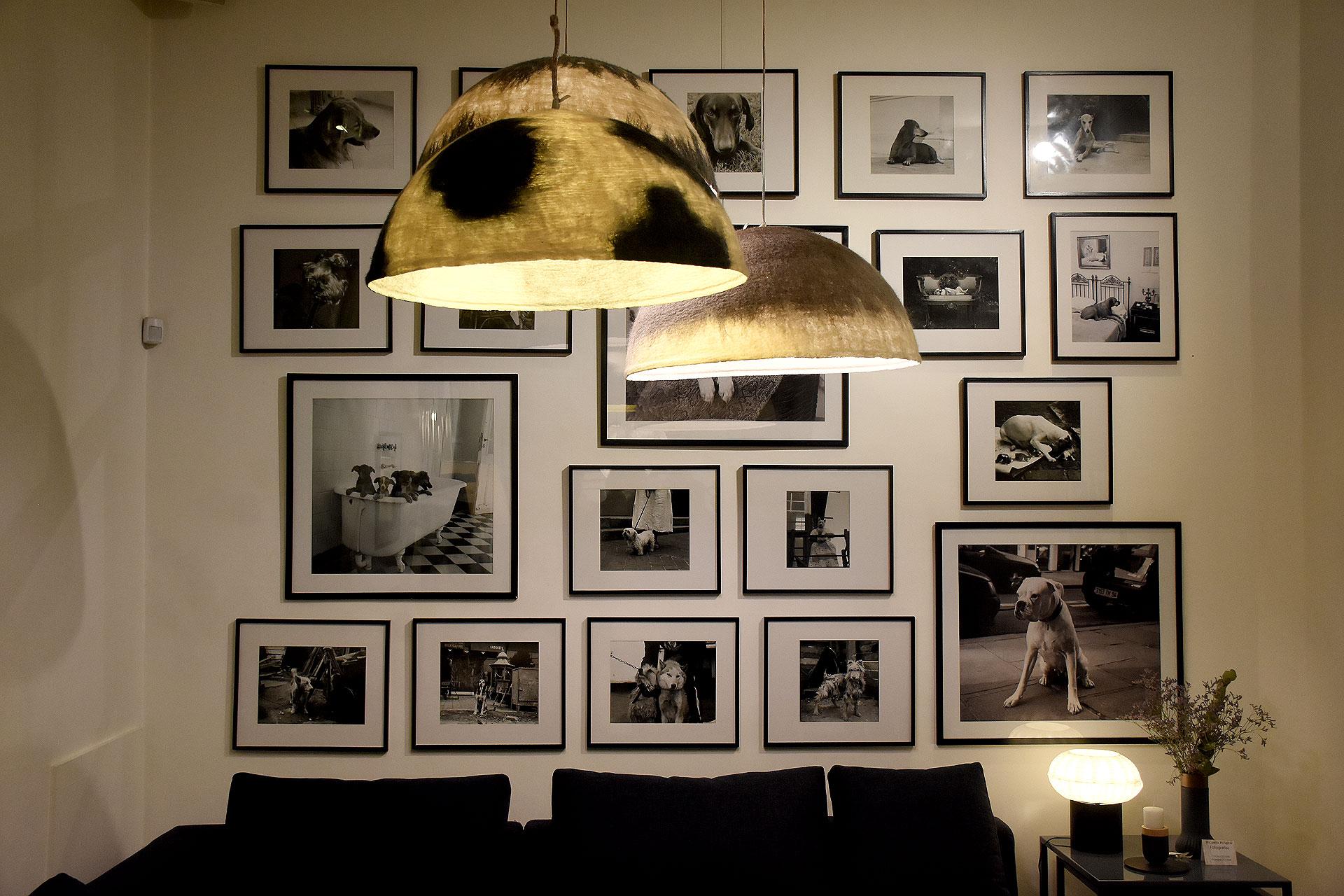 La exhibición es el retrato espontáneo de sus fieles compañeros a lo largo de los años: sus adorados perros