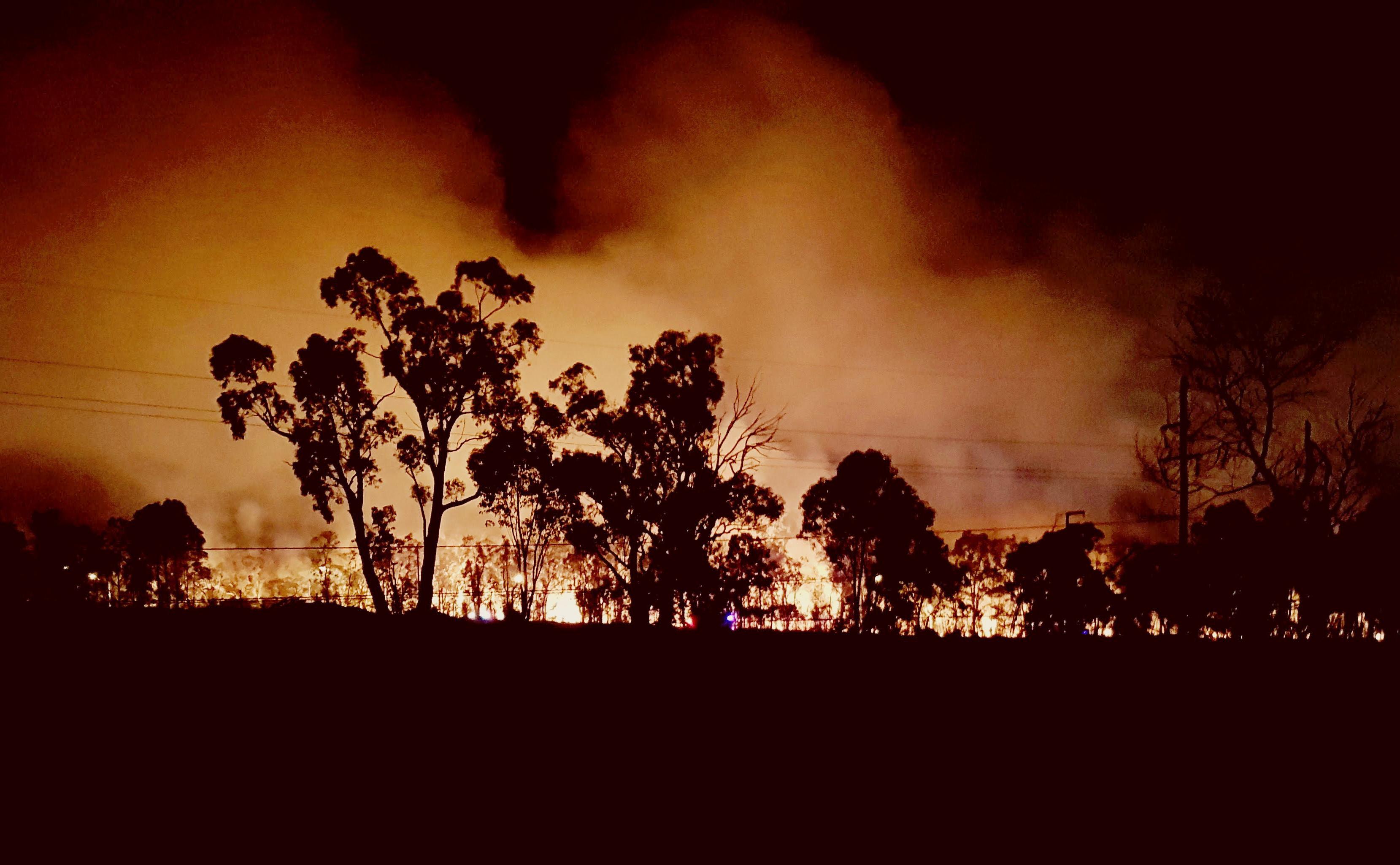 Las llamas en Voyager Point, sur de Sídney (AFP / Carlos Coutinho)
