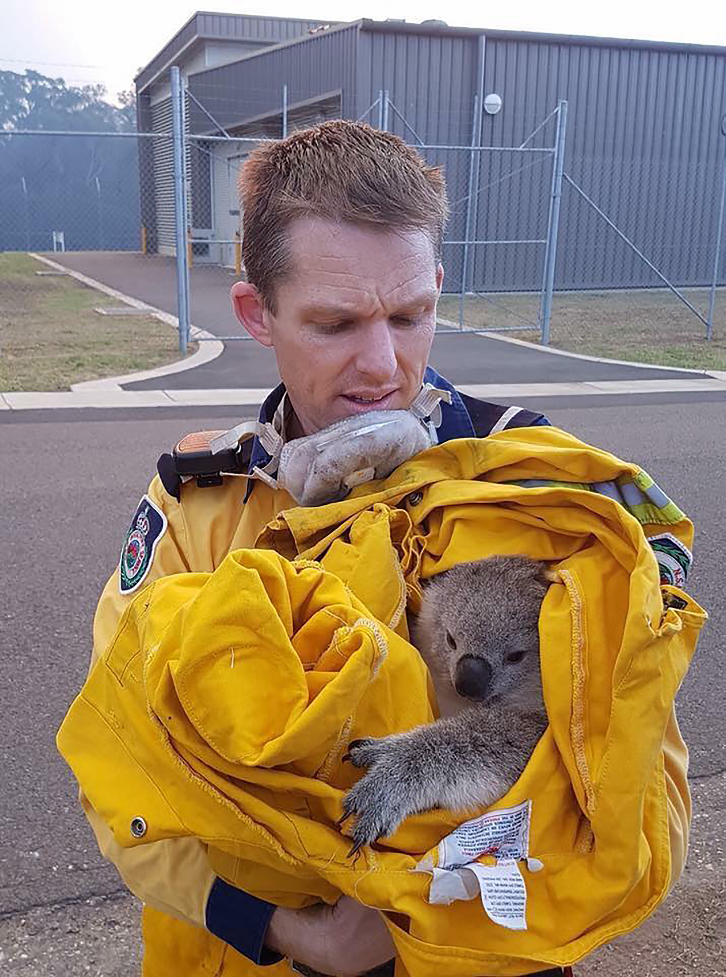 Un bombero con un koala salvado de las llamas en la Liverpool Military Area, una base del ejercito cerca de Sydney (AFP PHOTO / Fire & Rescue NSW / FIRE & RESCUE NSW)