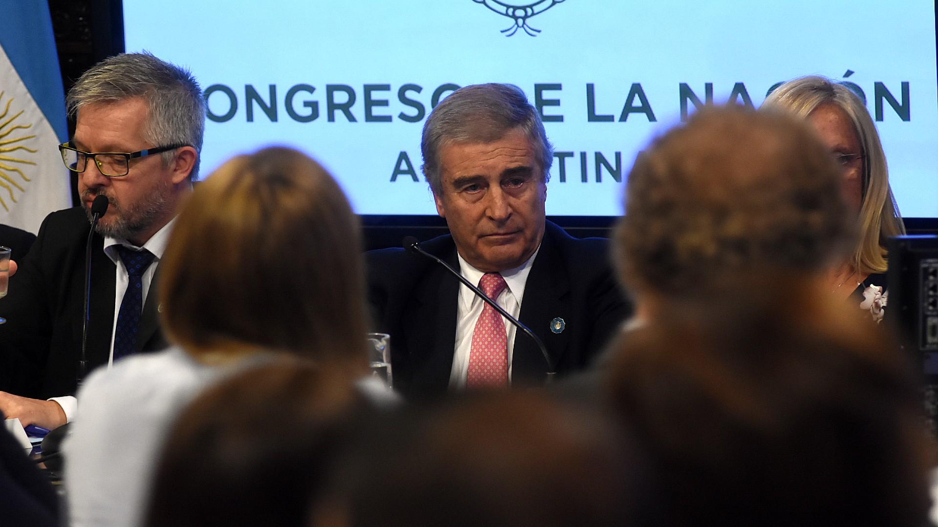 El ministro de Defensa, Oscar Aguad, durante su exposición en el Senado (Nicolás Stulberg)