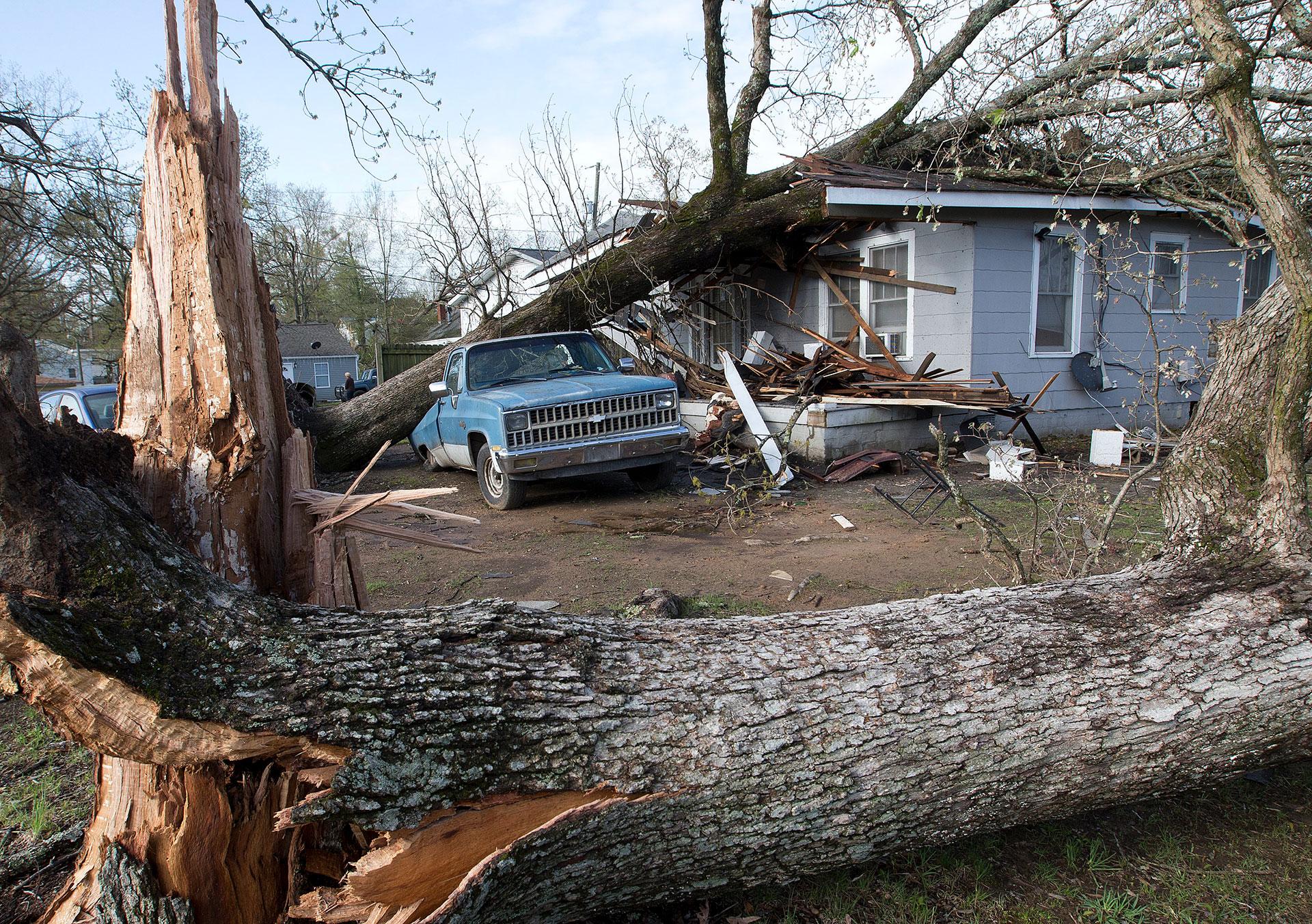 Una casa en la calle Wooddale fue aplastada por un árbol junto a una camioneta