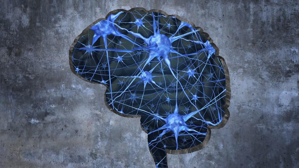 La corteza parietal posterior del cerebro es el factor clave, según investigadores (Getty)