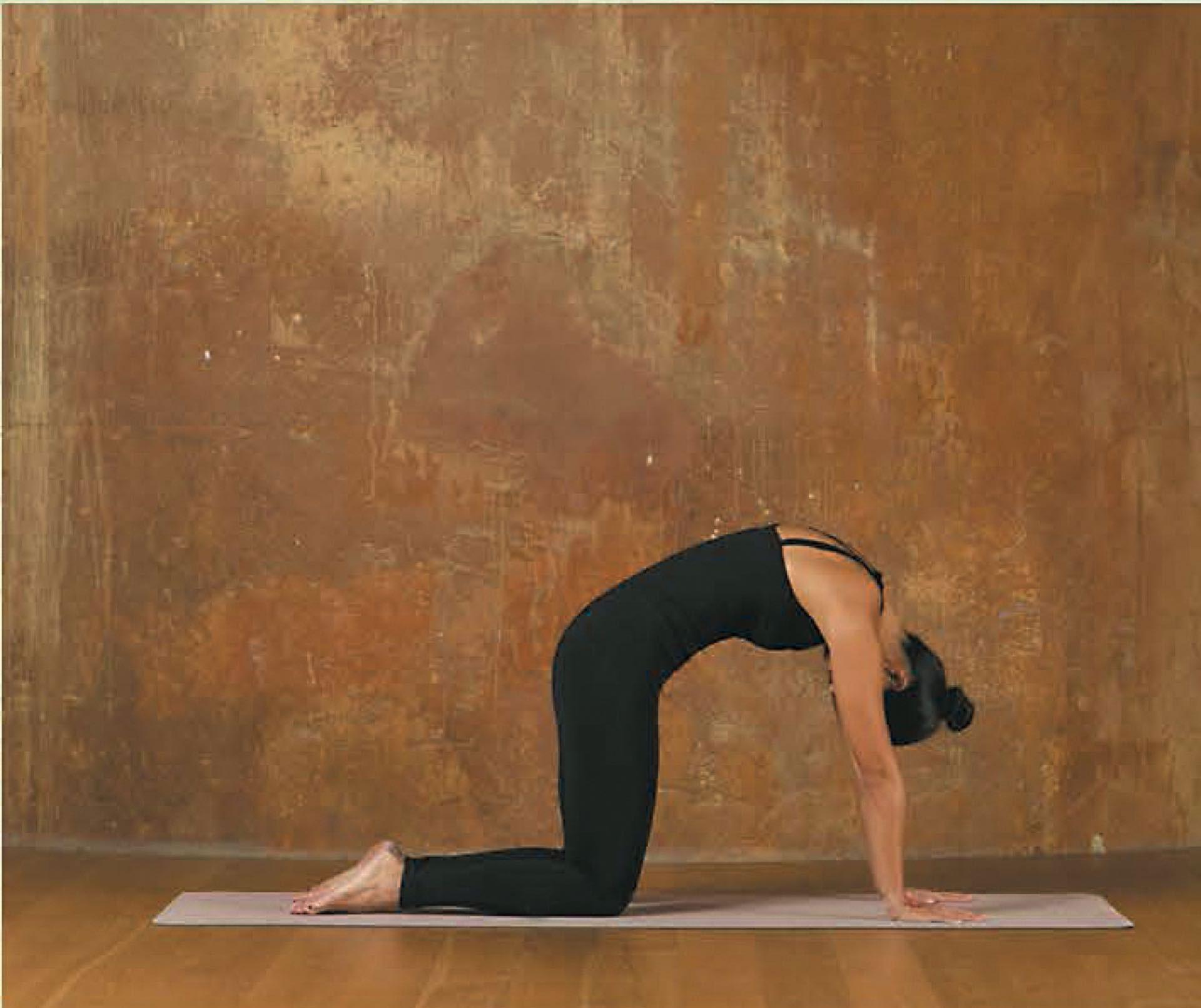#parati-yoga-2