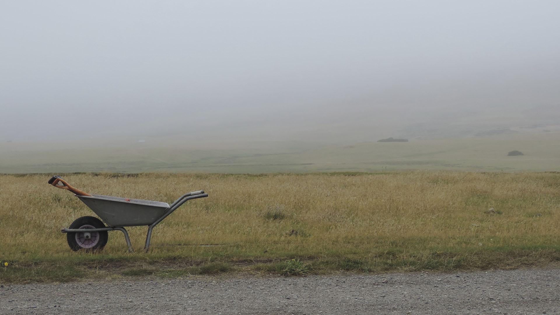 En el paisaje desolador de las islas Malvinas, los primeros camps dependieron de los ingresos derivados de la lana. Ahora son mini pymes familiares que producen alimentos y se han modernizado, abriendo oportunidades a la carne. Existe una población que vive de una actividad rural activa