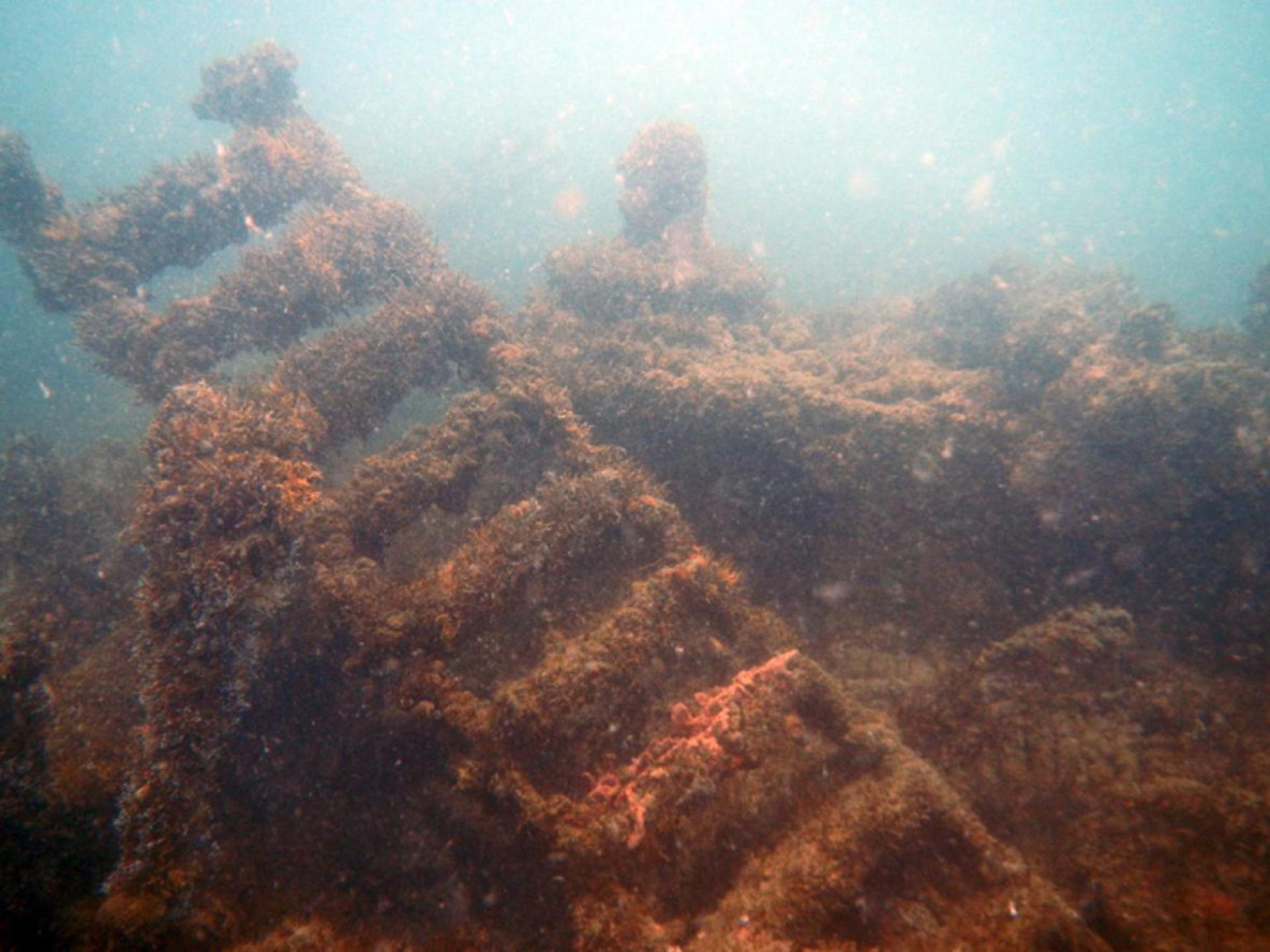 Los restos del vapor alemán están cubiertos por colares a 18 metros de profundidad.