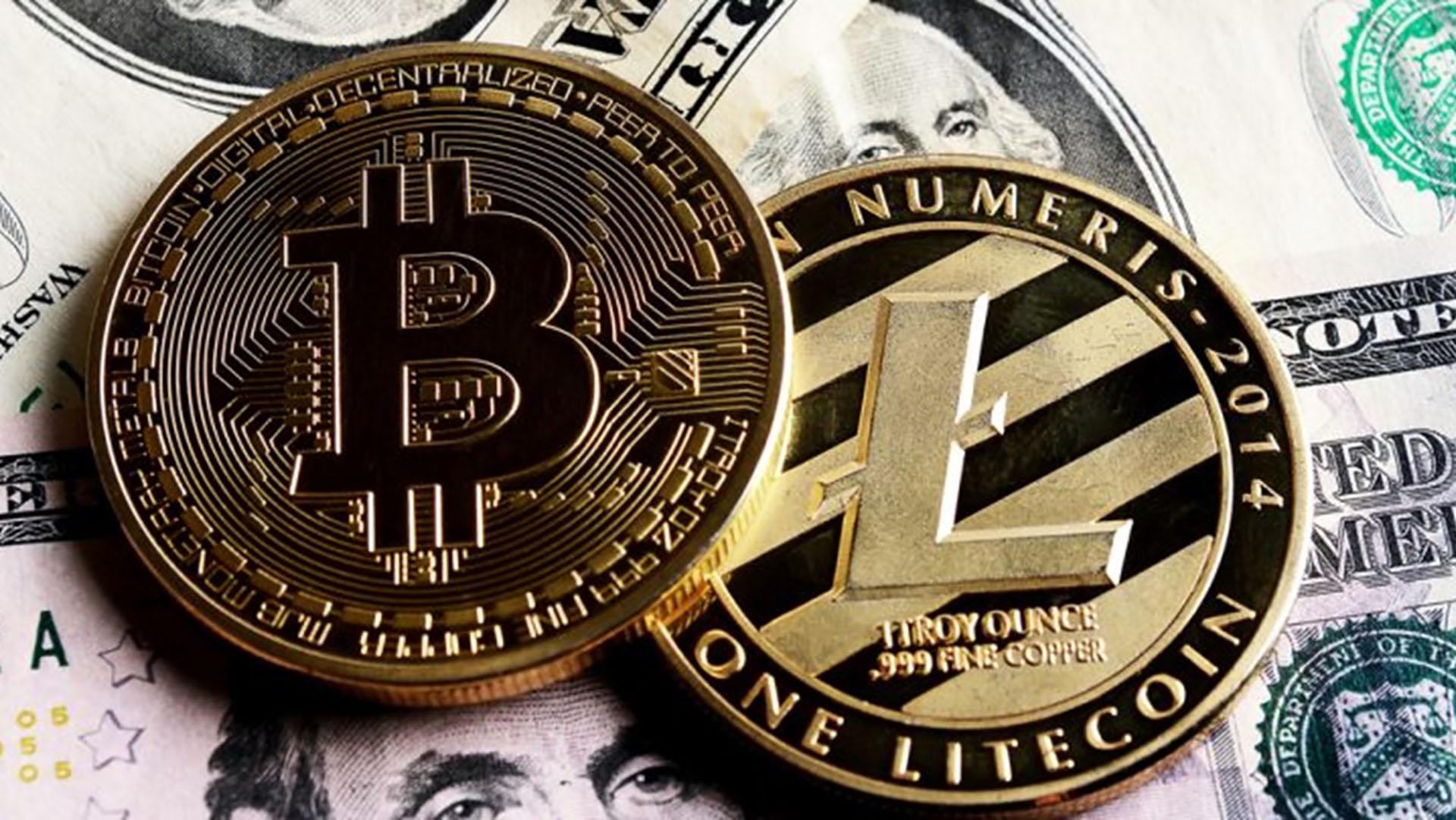 care este mai profitabilă bitcoină sau litecoină