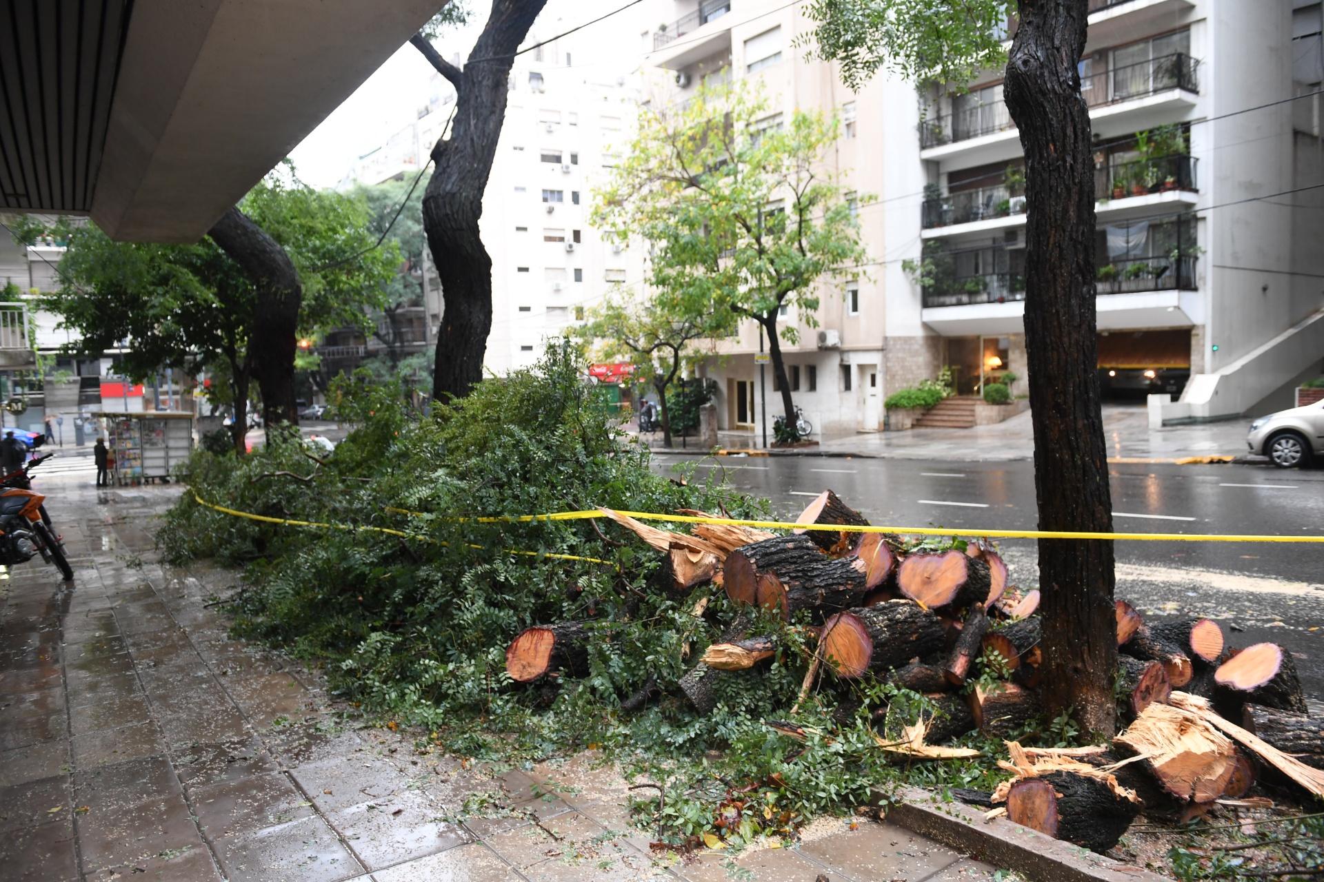 Horas después de la fuerte tormenta, personal de Defensa Civil continuó con los trabajos de ayuda a los vecinos damnificados
