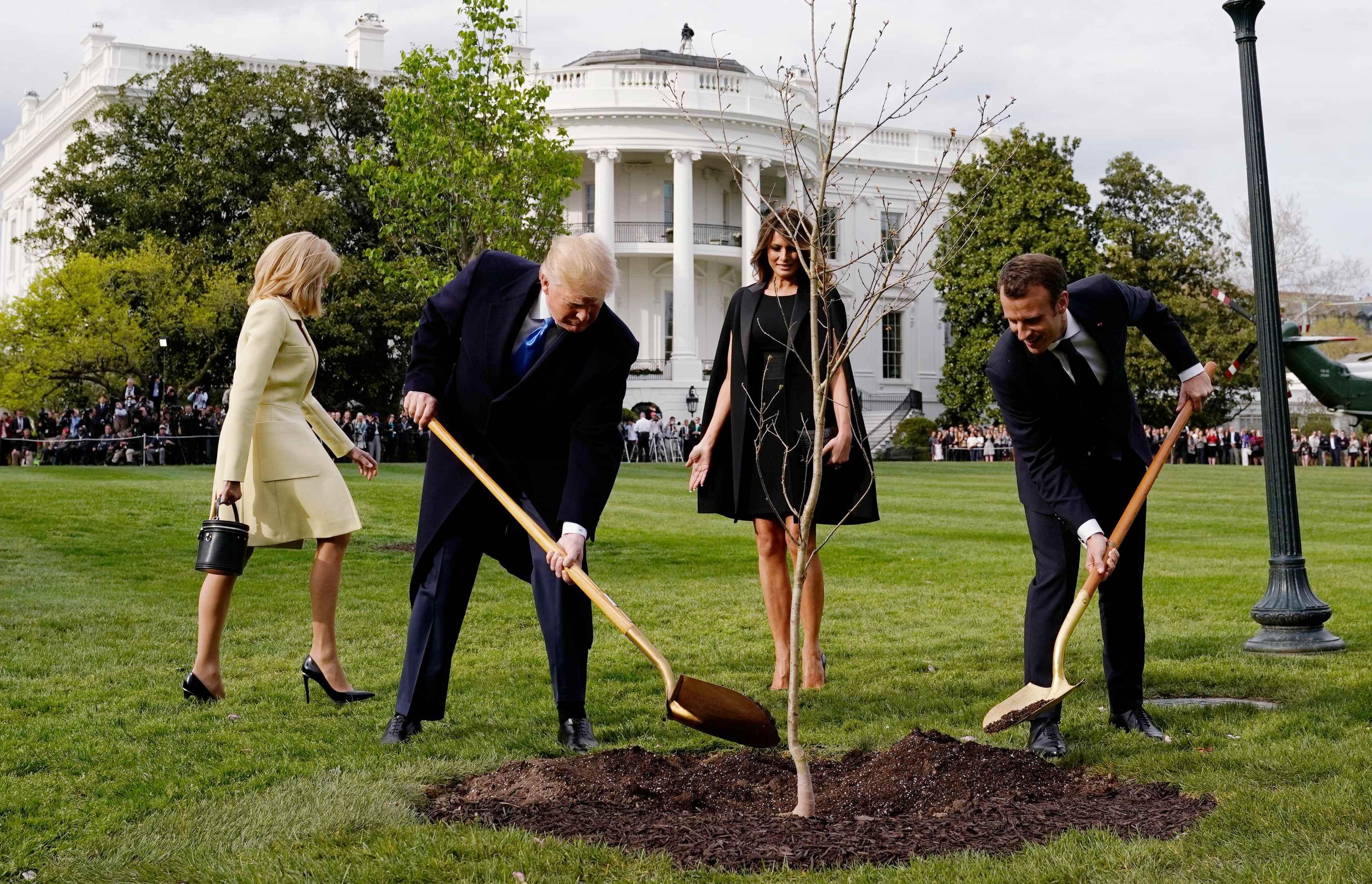 Donald Trump y Emmanuel Macron cubre con tierra el árbol en el jardín de la Casa Blanca (REUTERS/Joshua Roberts)