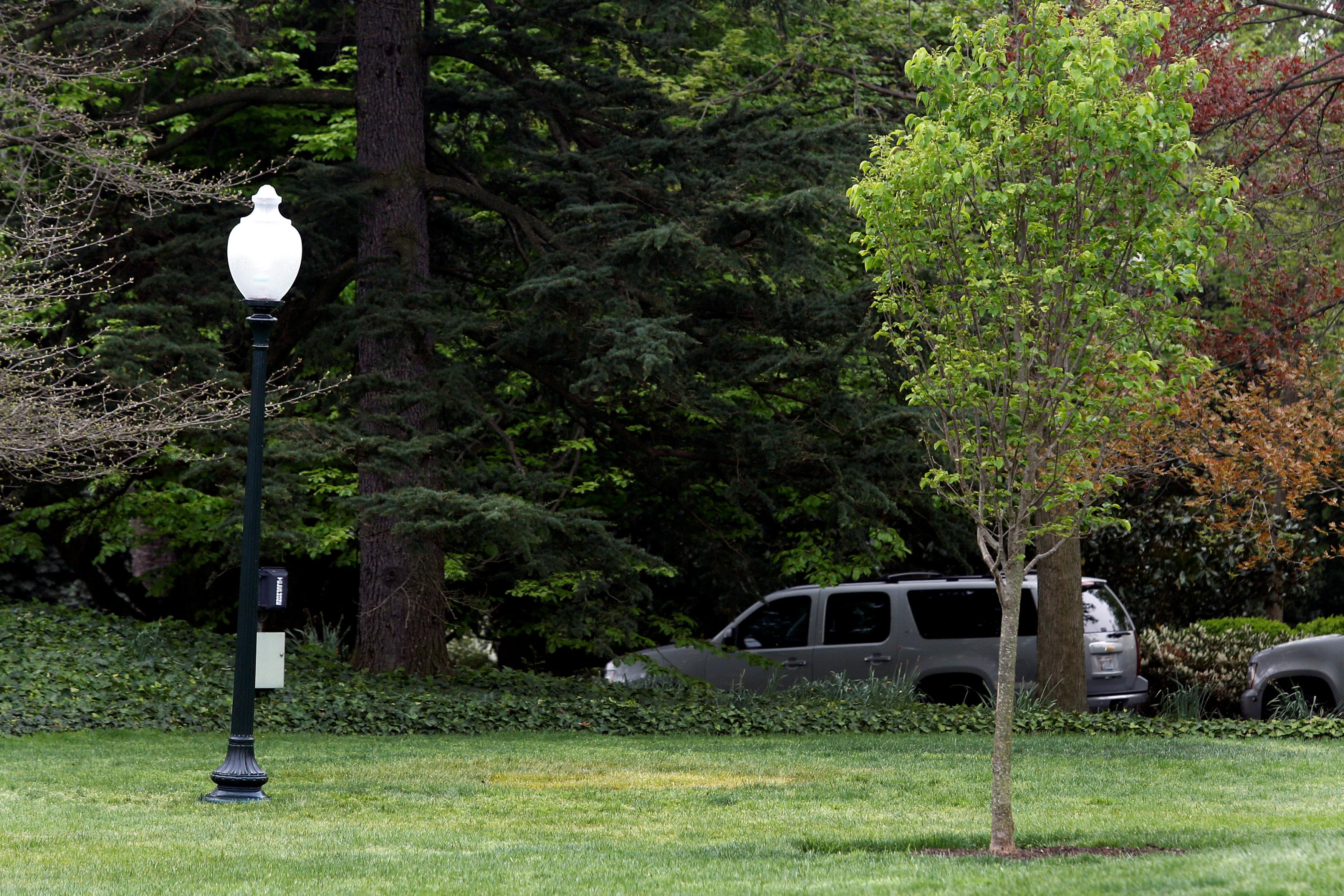 El lugar en el que debía estar el árbol plantado por los mandatario (REUTERS/Yuri Gripas)