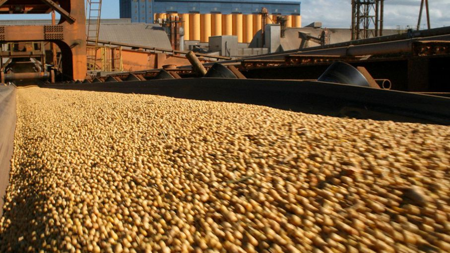 Mientras países desarrollados aplican políticas proteccionistas, Argentina castiga al productor con retenciones.