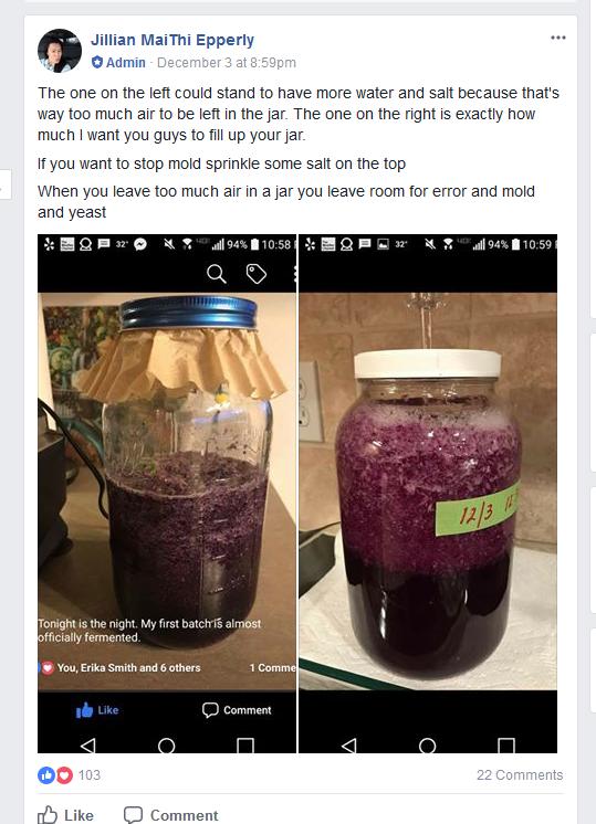 Como administradora de su grupo, Epperlydaba indicaciones sobre cómo realizar la fermentación de la col. (Facebook)
