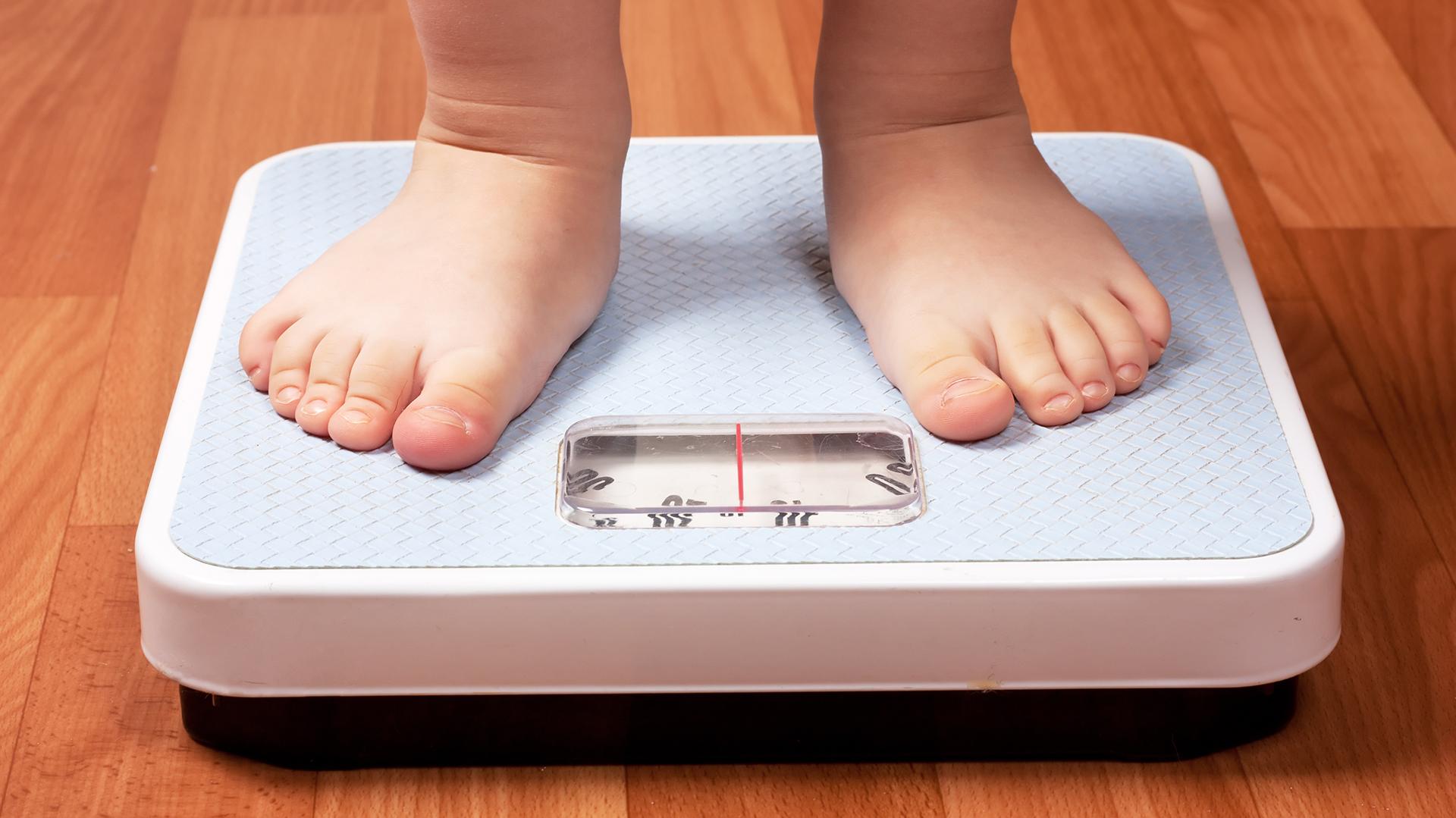 La epidemia de obesidad infantil en la Argentina preocupa a la OMS y ocupa la agenda de la Asamblea Mundial de la Salud