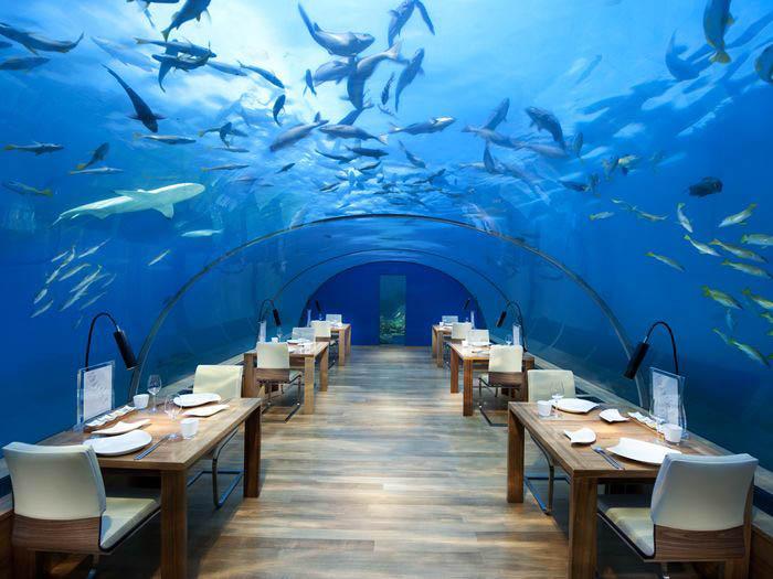 (Cortesía: Conrad Maldives Rangali Island)