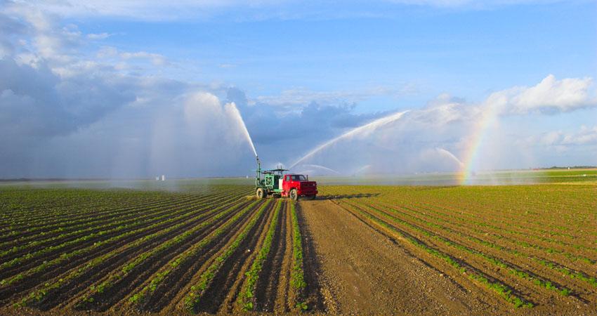 Optimum Agriculture gestiona propiedades en los Estados Unidos y América Latina