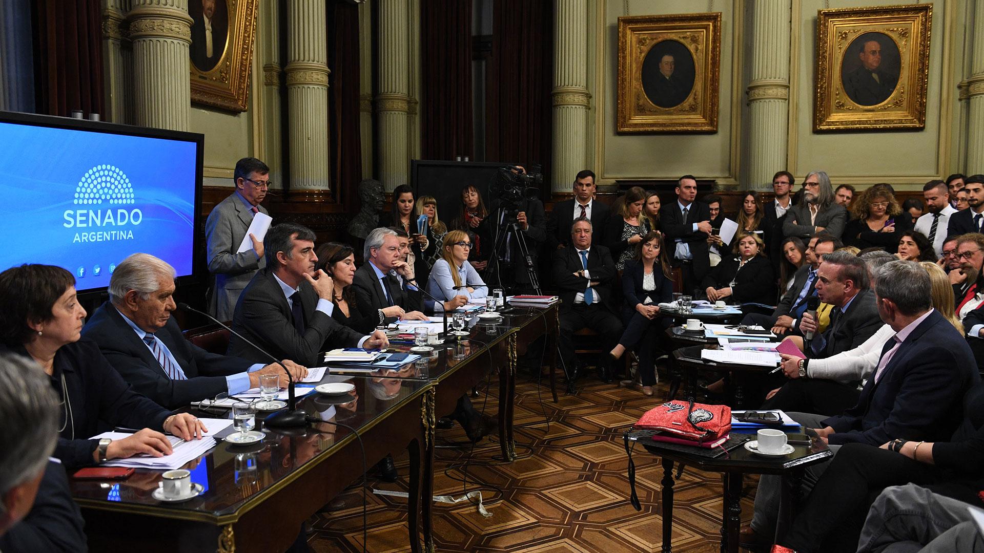 Pichetto envió una advertencia al Gobierno (Fotos:SENADO)
