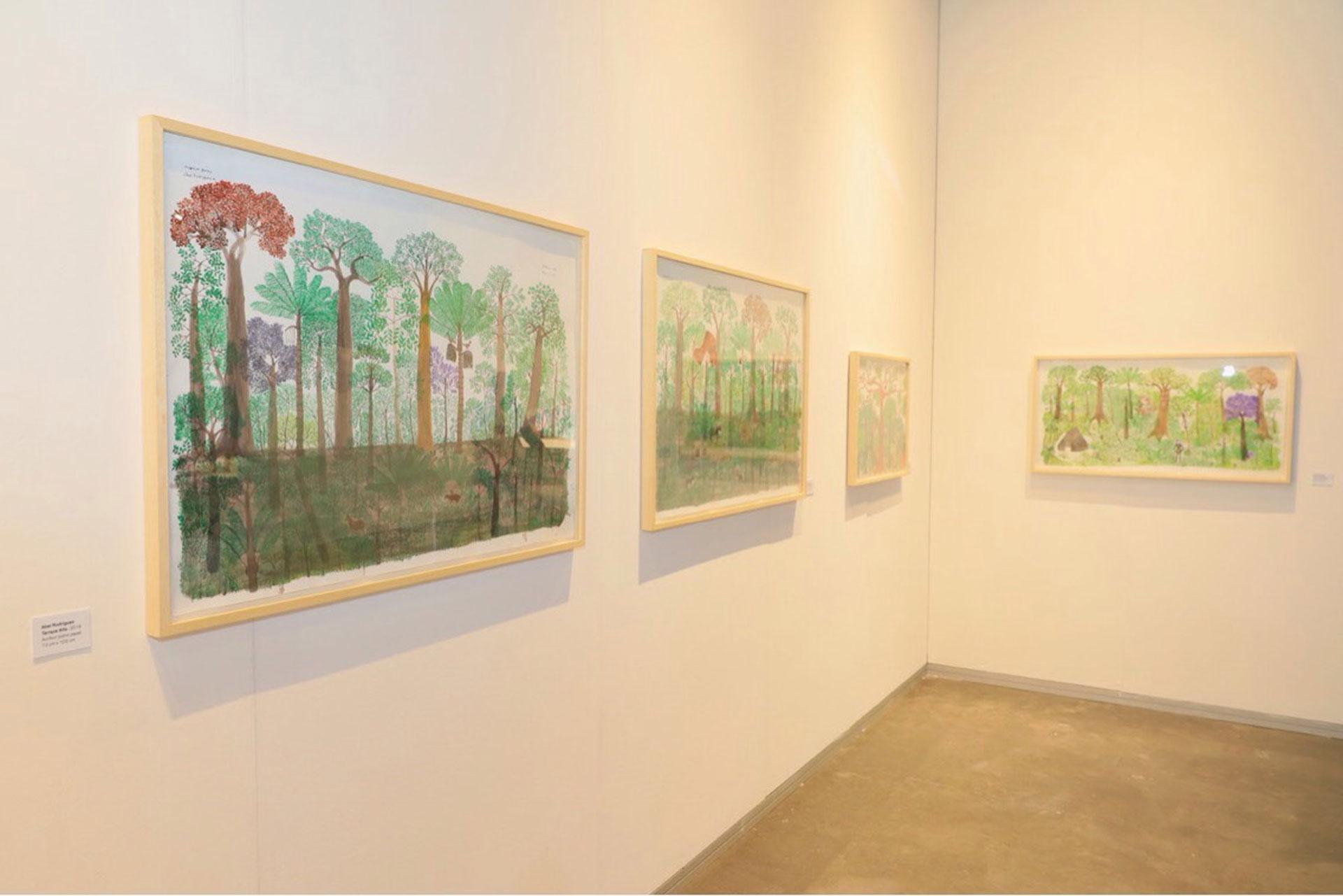 Abel Rodríguez (Colombia). Galería Instituto de Visión, Colombia