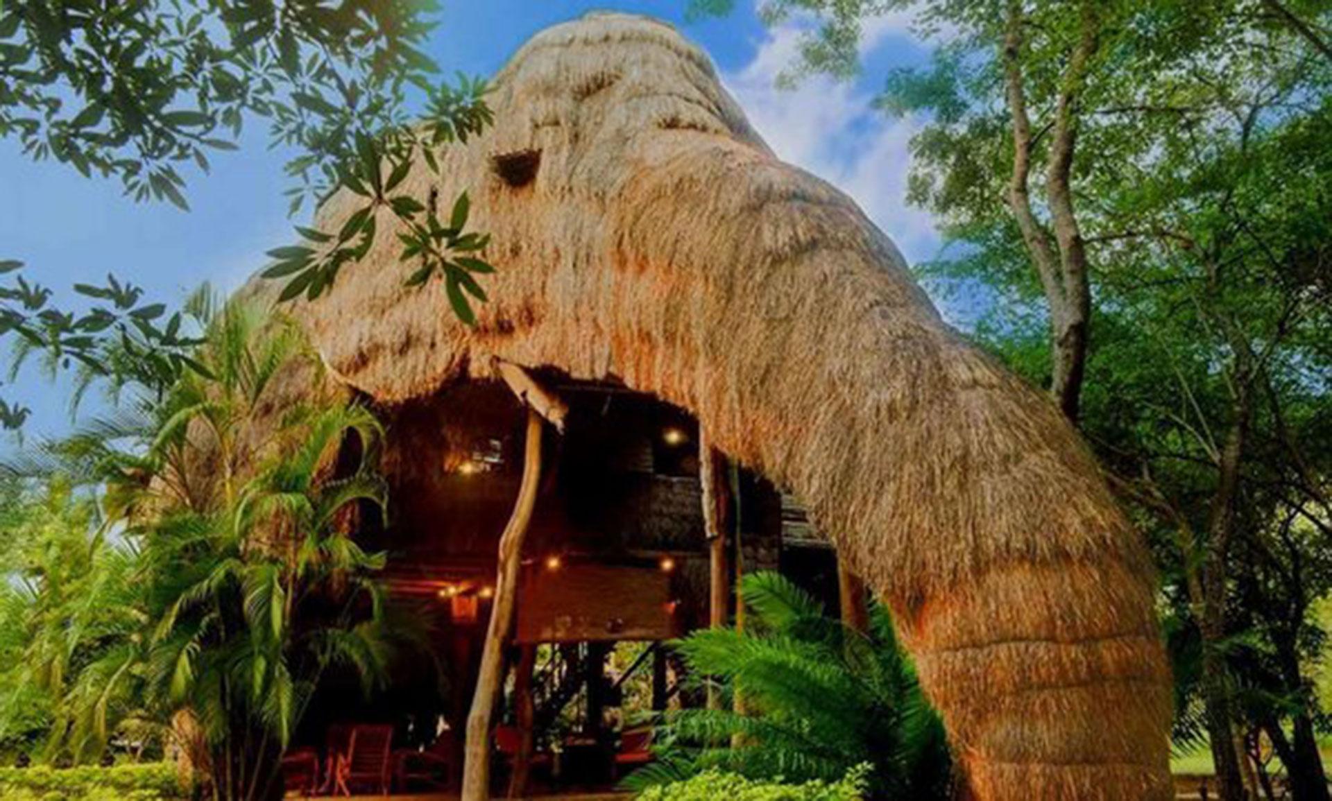 Kumbuk River Resort (Parque Nacional Yala, Sri Lanka). Es un eco resort con habitaciones que tienen forma de animal, como ésta, que emula a un elefante