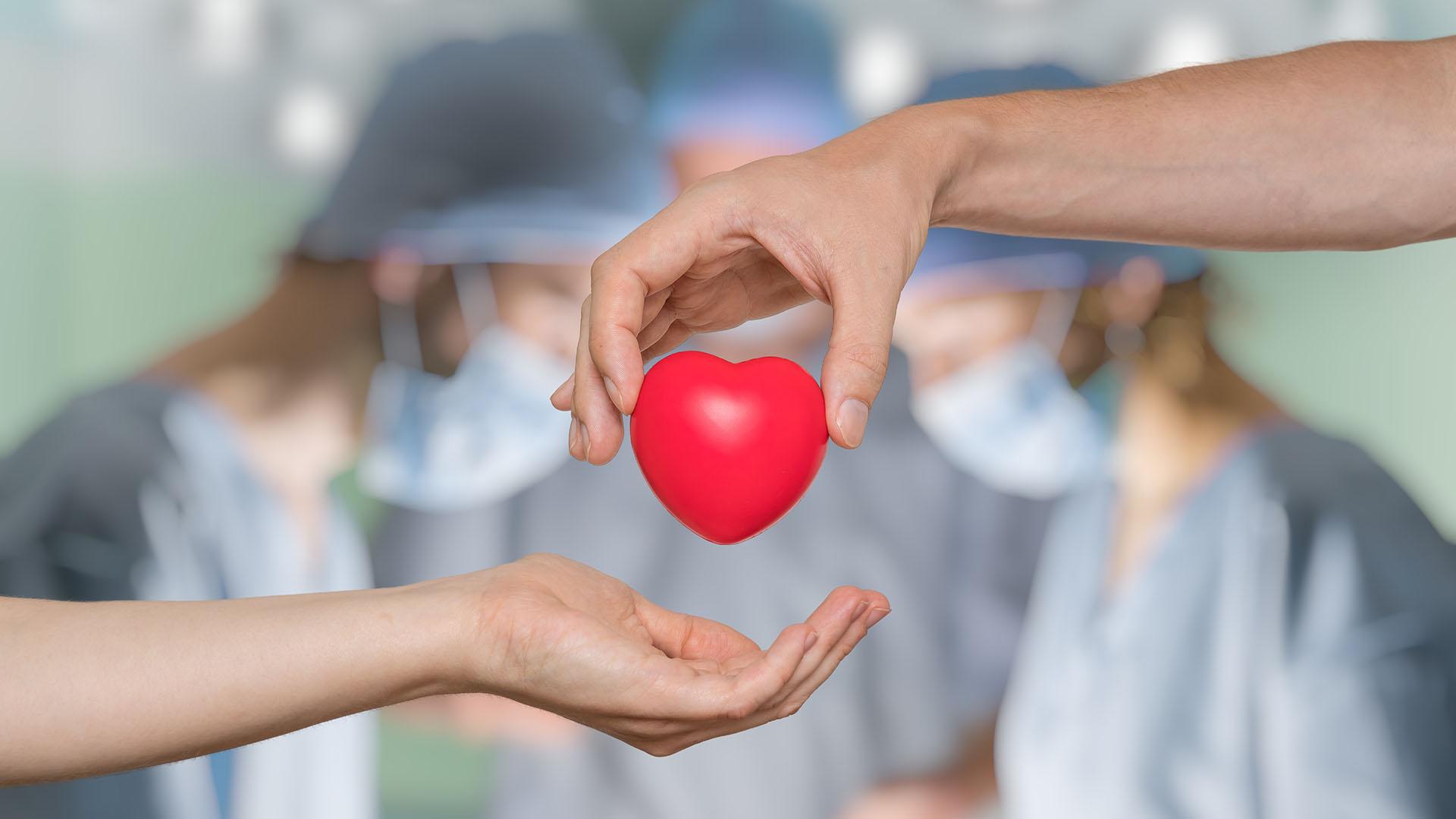 """Sin donantes, no hay trasplantes"""": más de 7800 personas esperan un órgano en el país y 250 son niños y adolescentes - Infobae"""