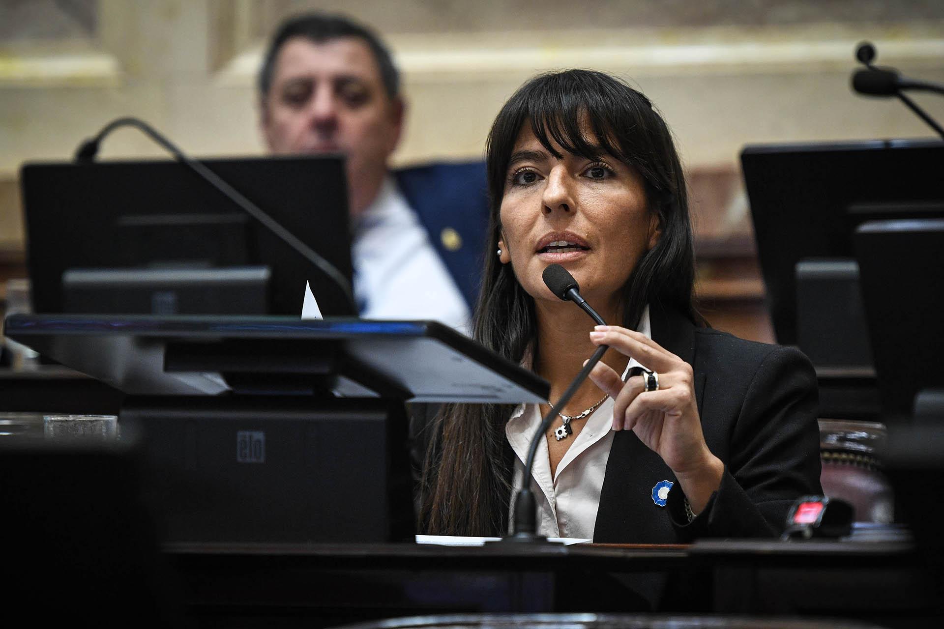 La senadora por Mendoza, Fernanda Verasay