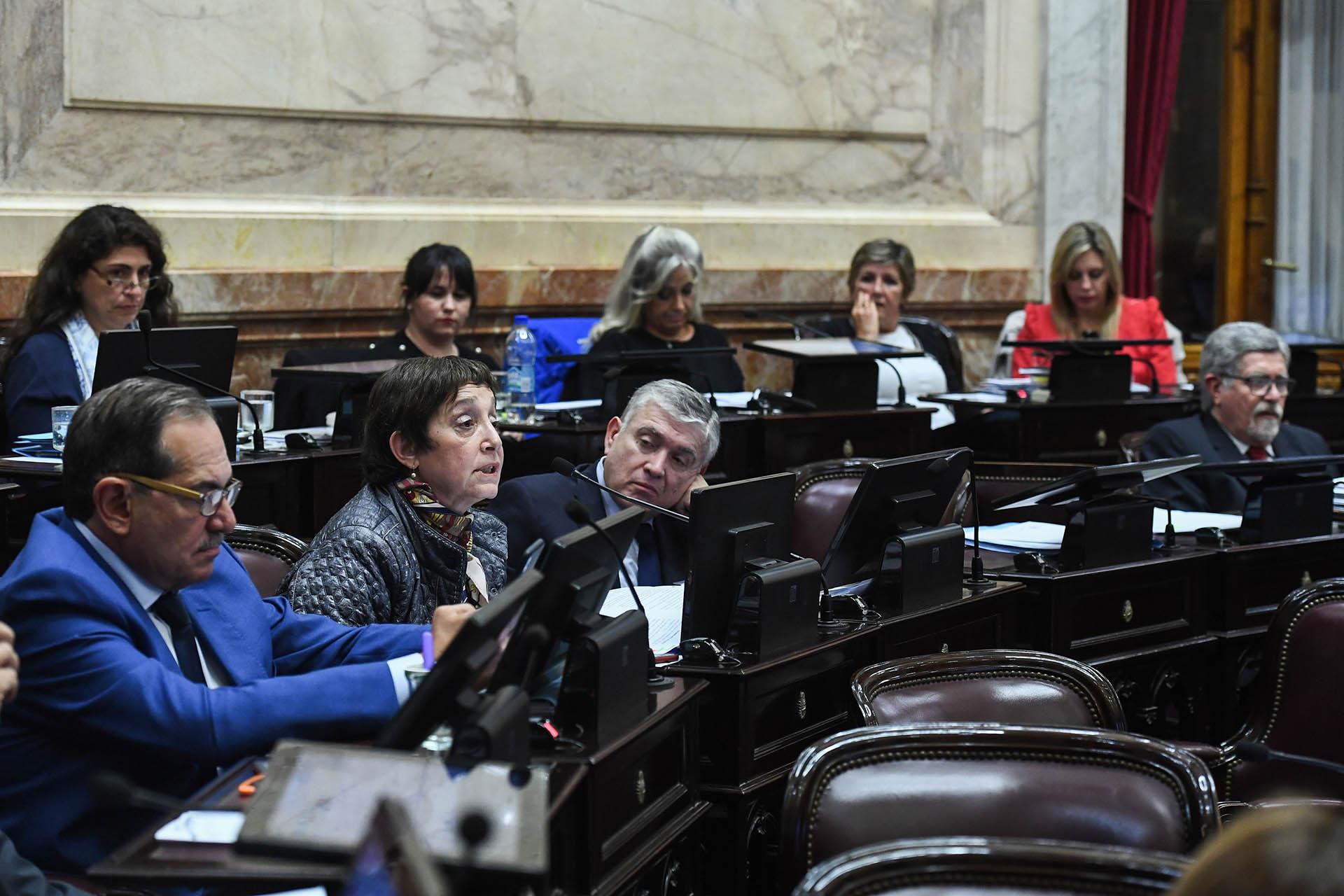La senadora tucumana Beatriz Mirkin
