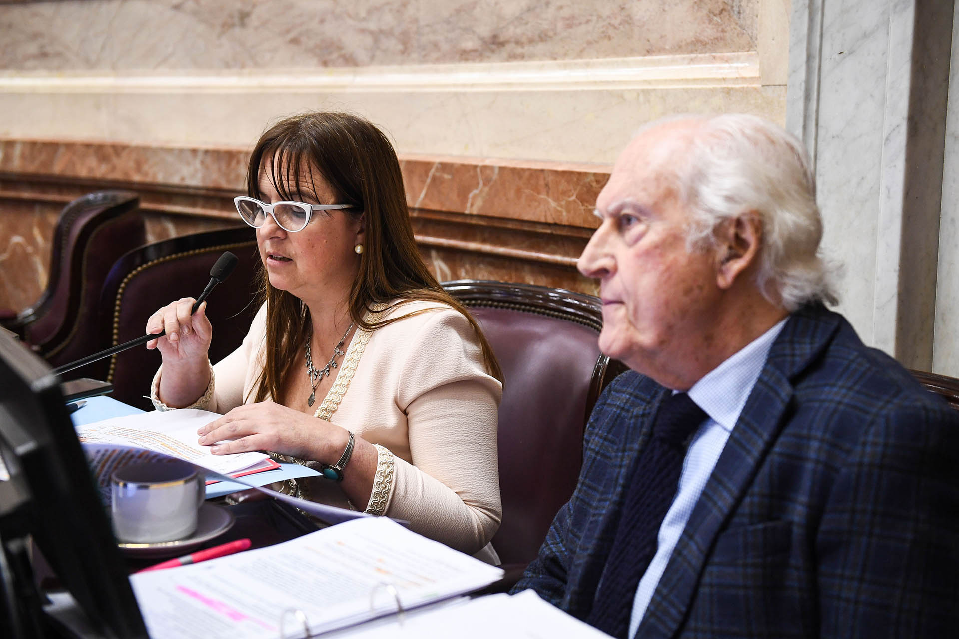 Fernando Pino Solanas escucha a la senadora Magdalena Quintana