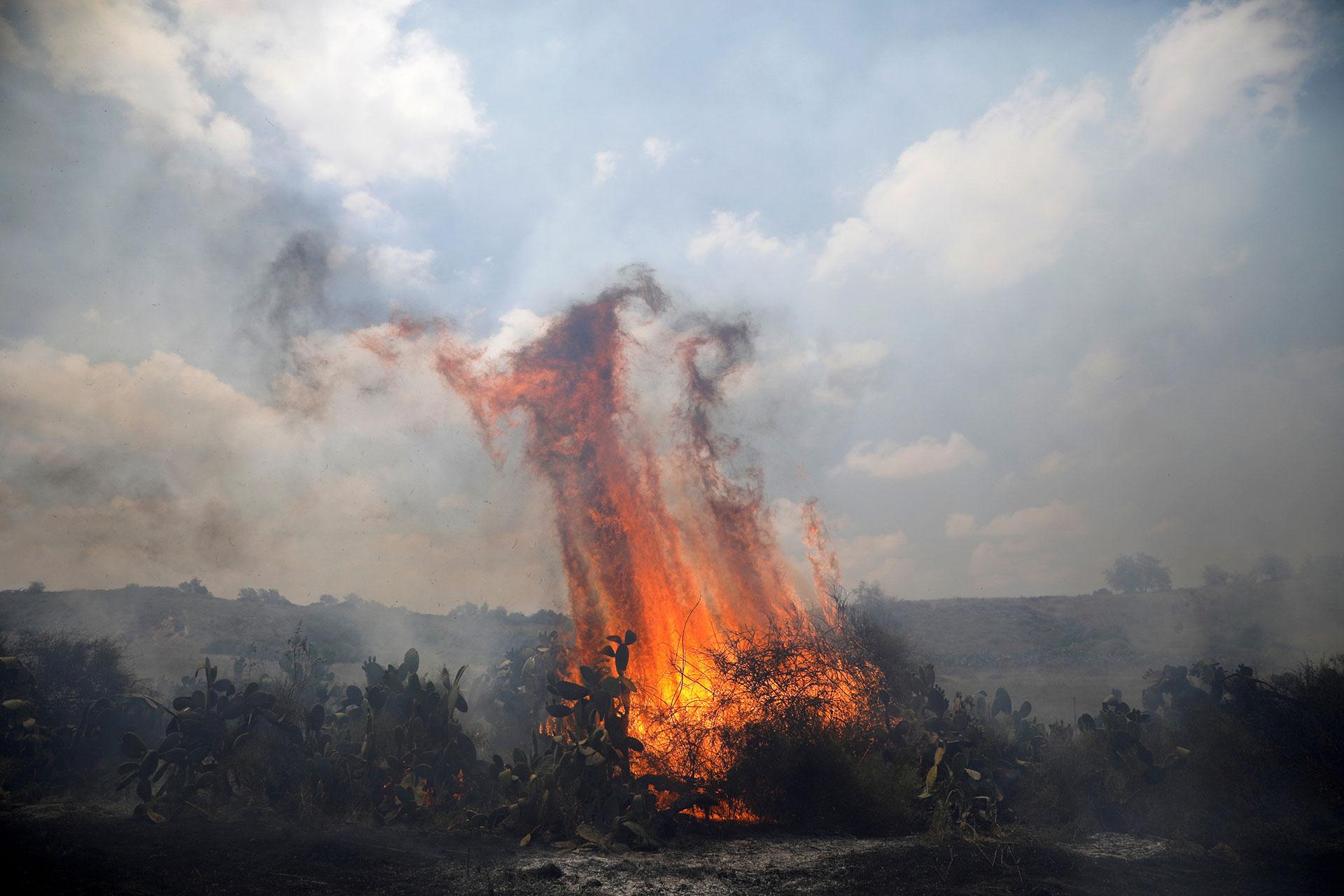 Los incendios provocados afectaron 910 hectáreas de campos y bosques, causando 2,5 millones de dólares en daños (Reuters)