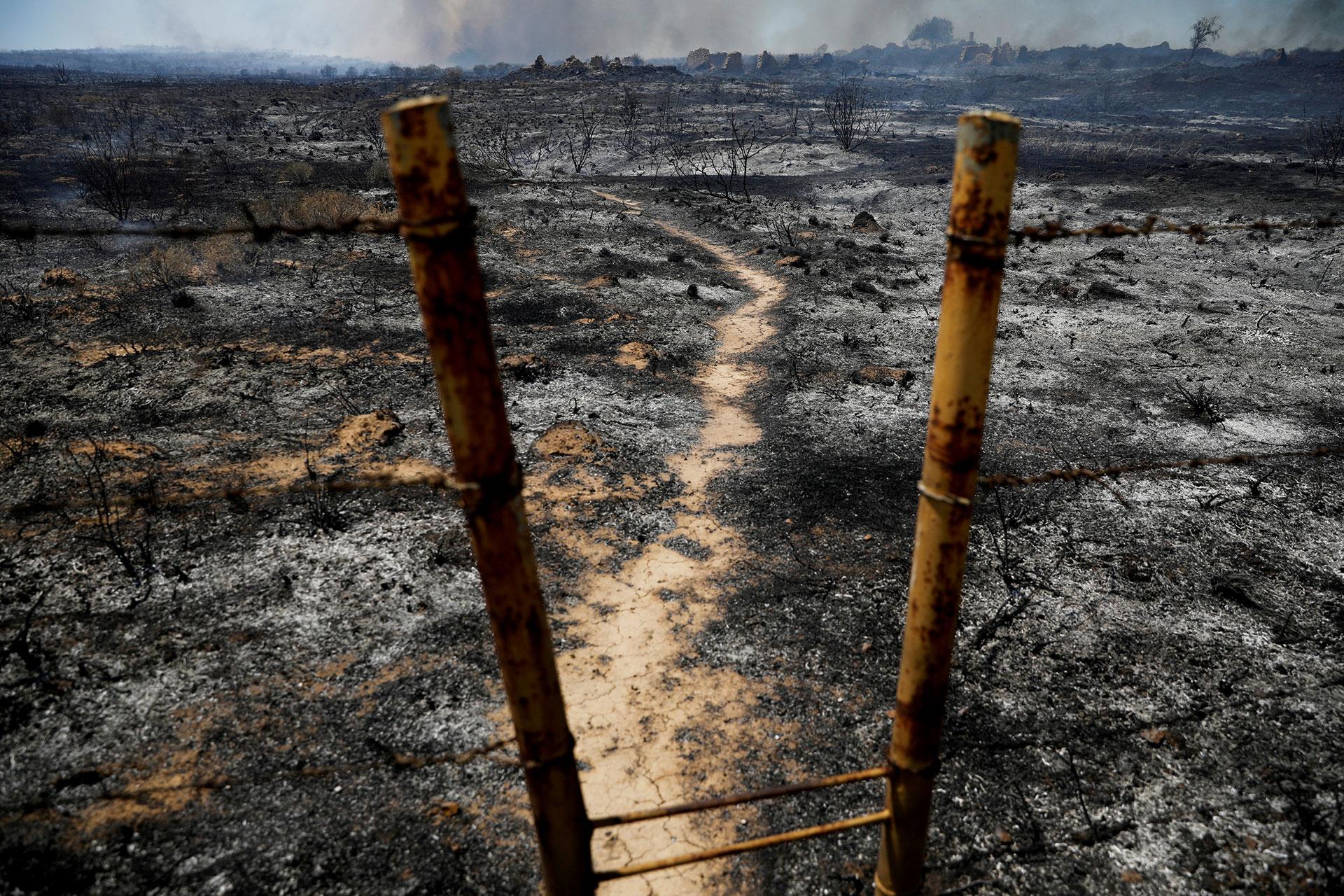 Así quedó uno de los campos luego de un incendio provocado por una cometa (Reuters)